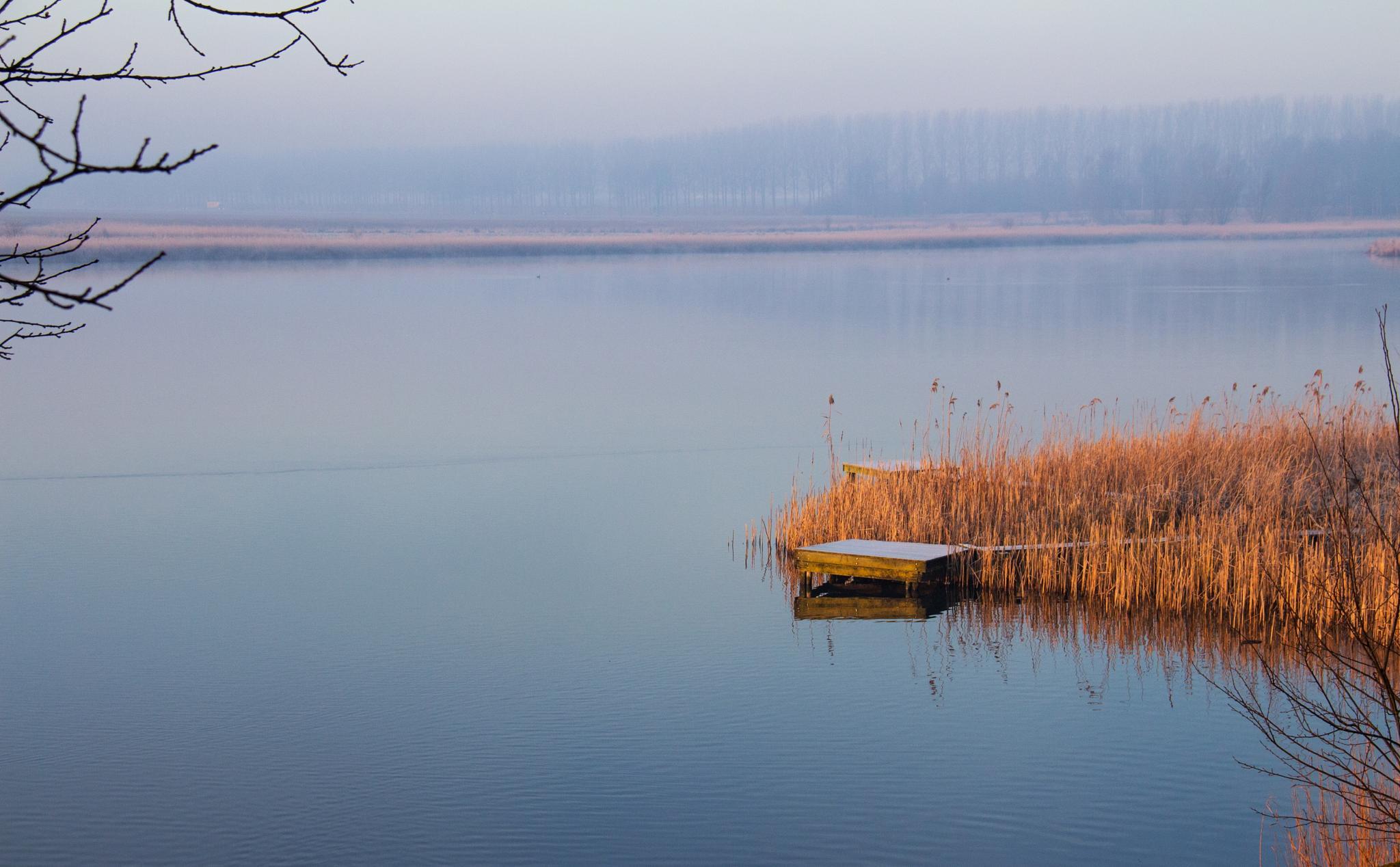 winter by Tineke.Hemelsoet-Markenhof