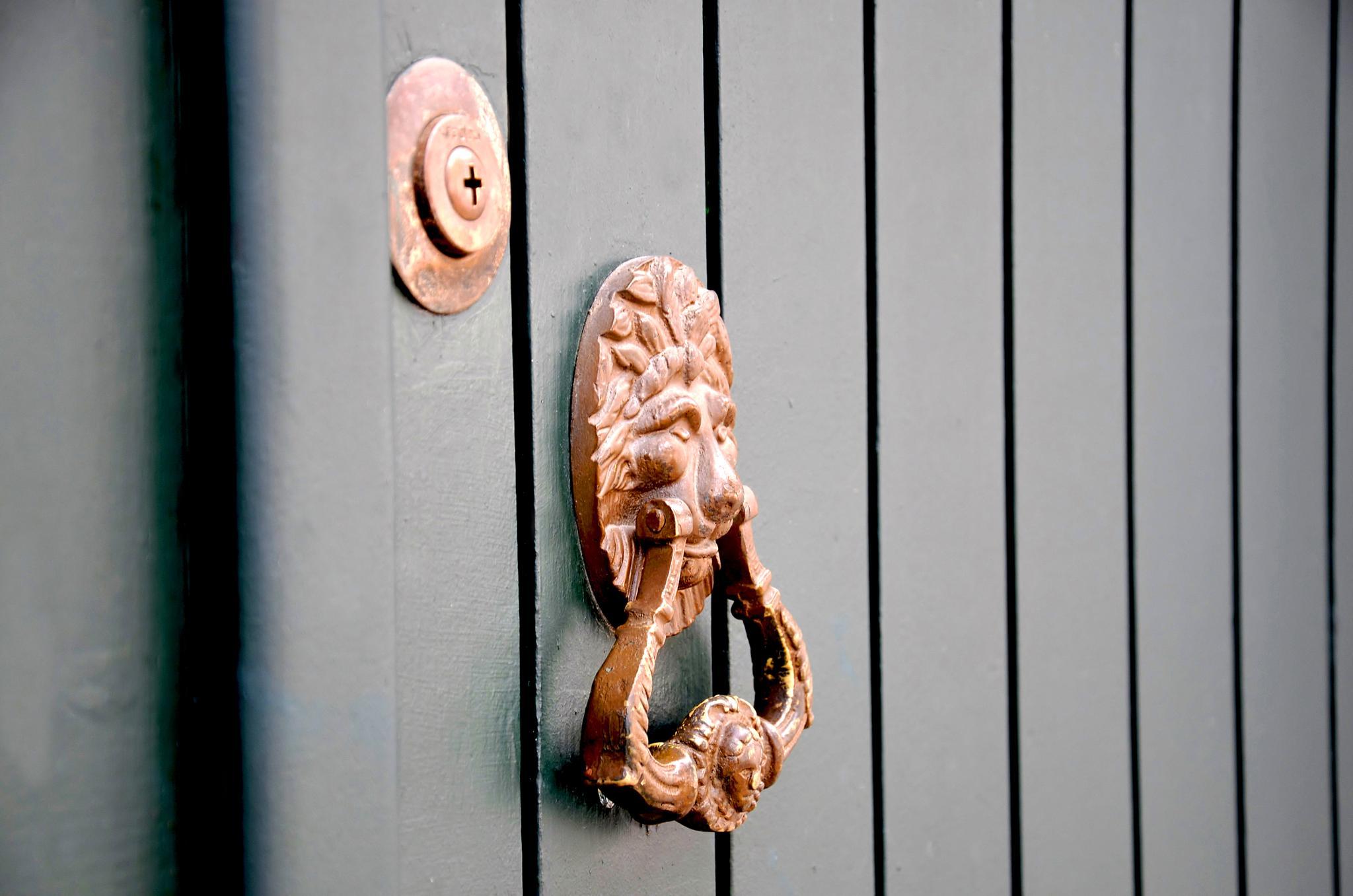 Photo in Architecture #lion #door knob #door
