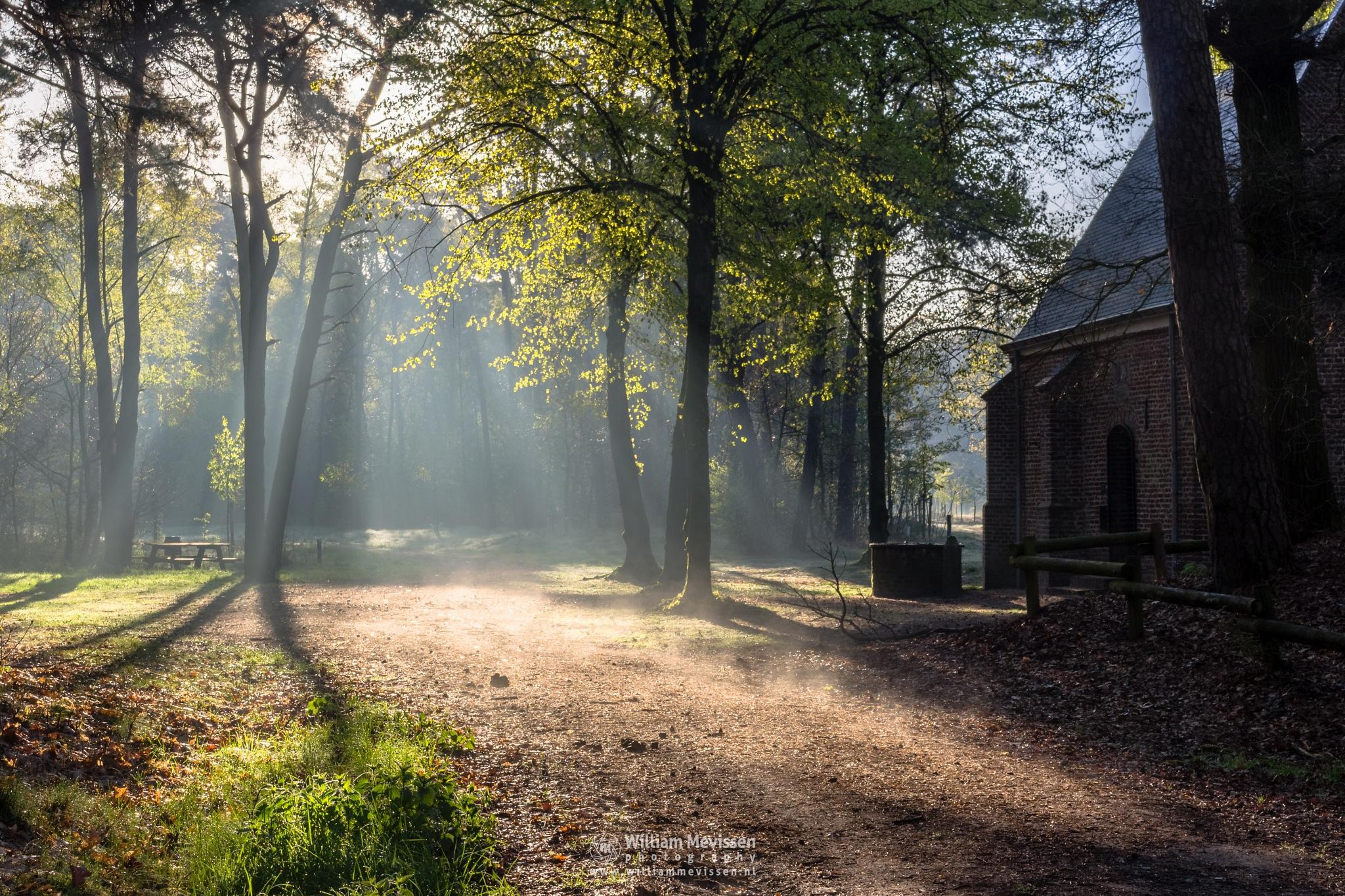 Chapel Light by William Mevissen