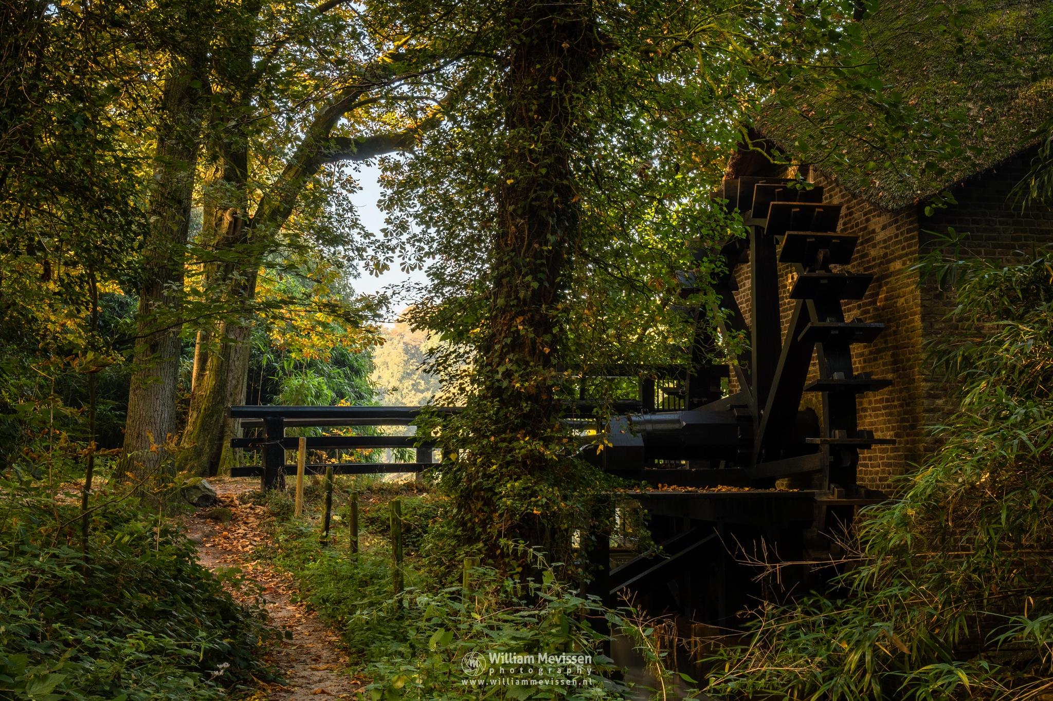 Watermill by William Mevissen