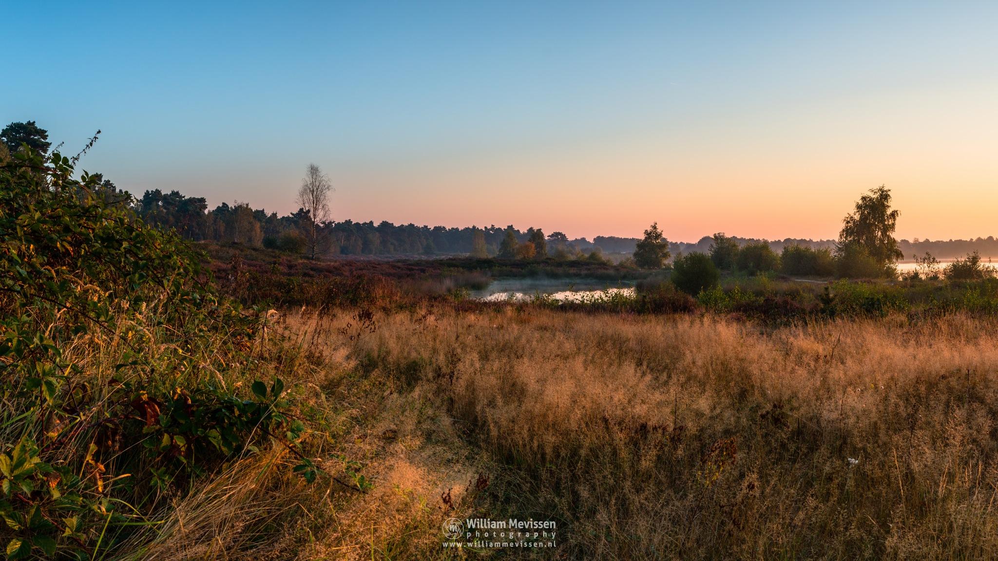 Panorama - Around The Lake by William Mevissen