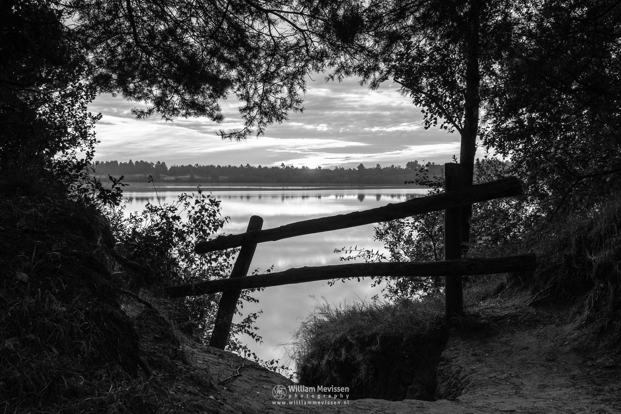 Photo in Black and White #lake #reindersmeer #maasduinen #forest #limburg #noord-limburg #well #nature #sunrise #bw #light #mood #zwartwit #blackandwhite #fence