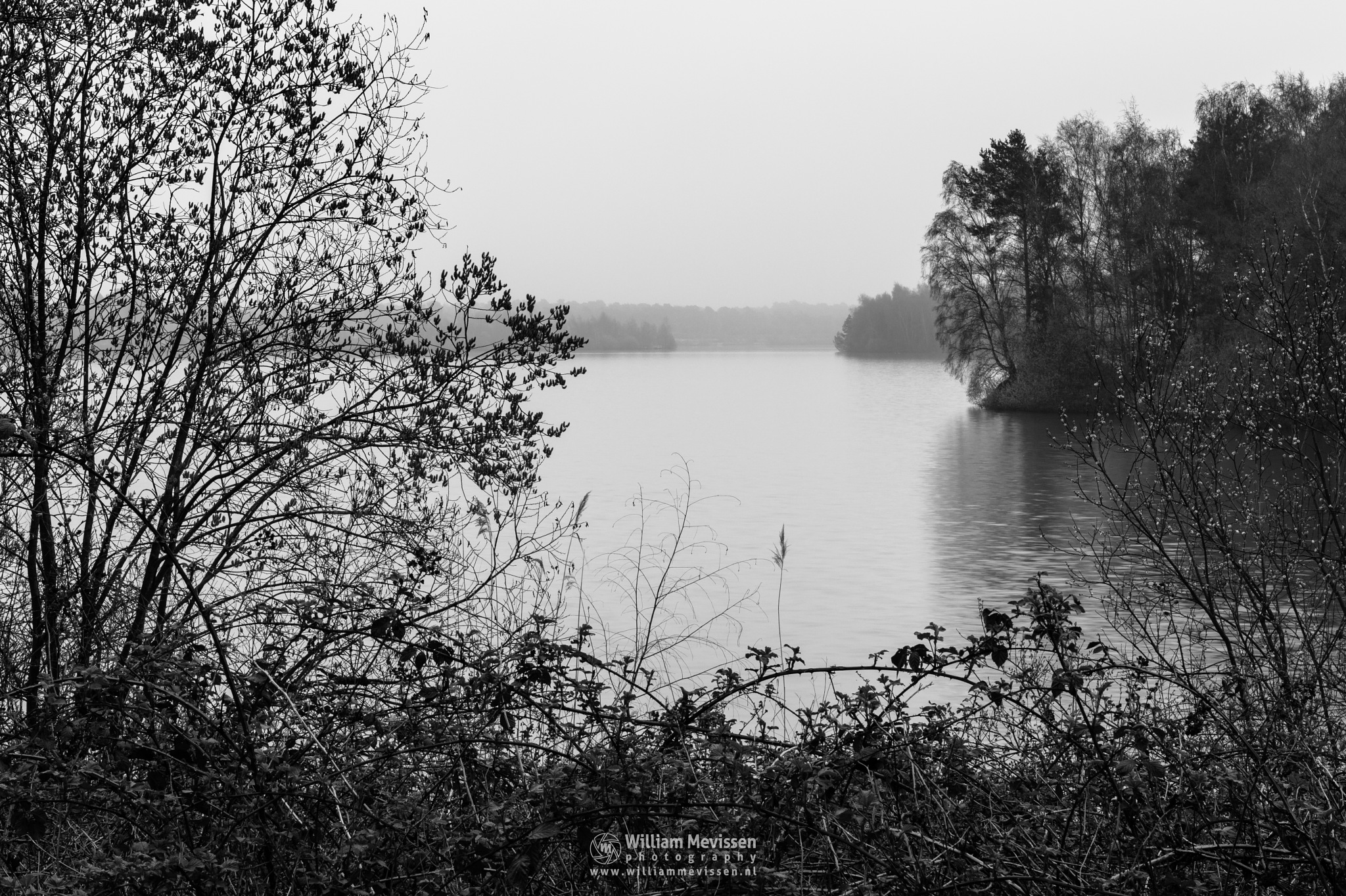 Photo in Black and White #trees #lake #reindersmeer #maasduinen #limburg #noord-limburg #well #nature #mood #silhouette #bw #blackandwhite #mist #fog