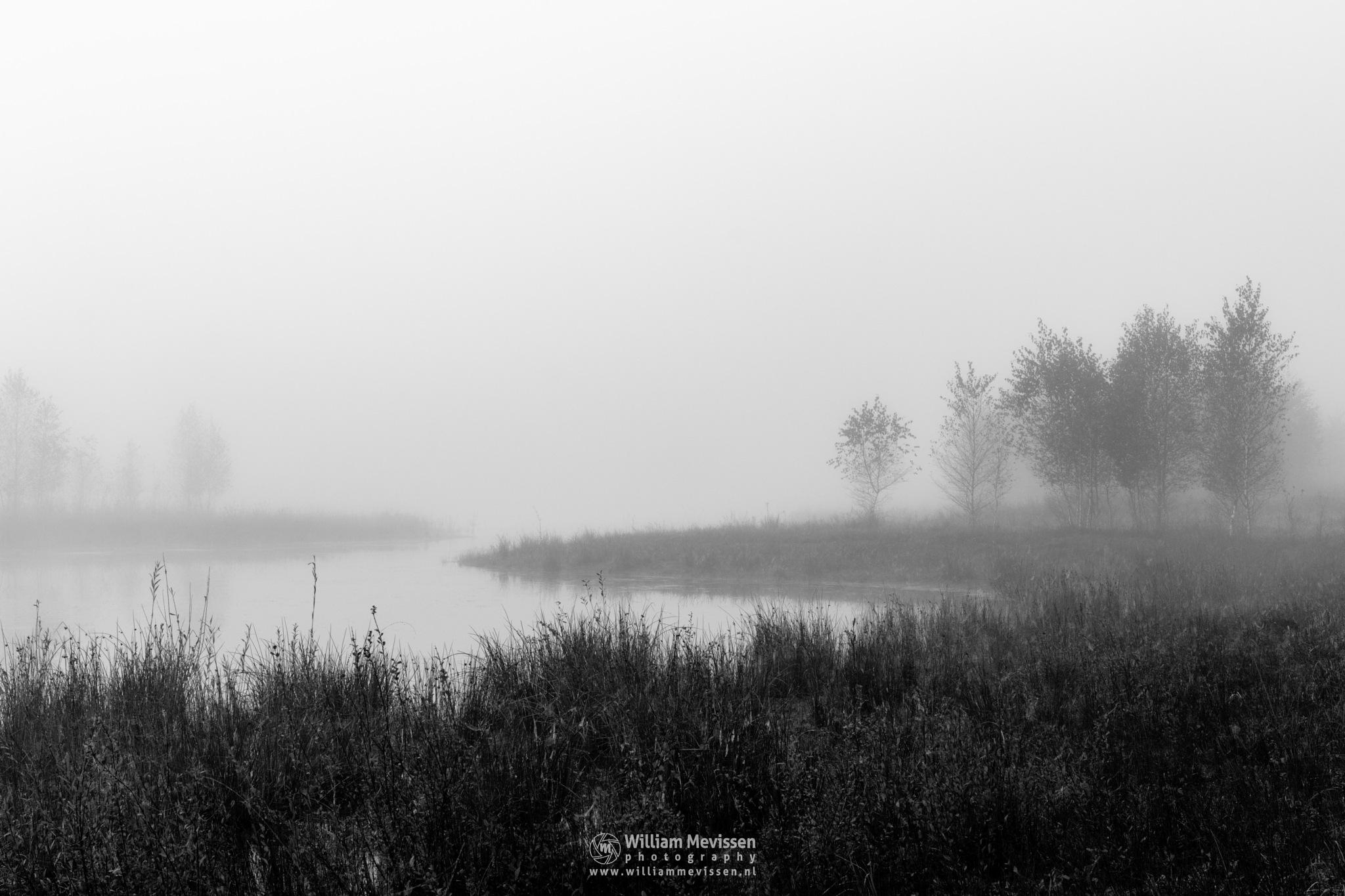 Misty Fen View by William Mevissen