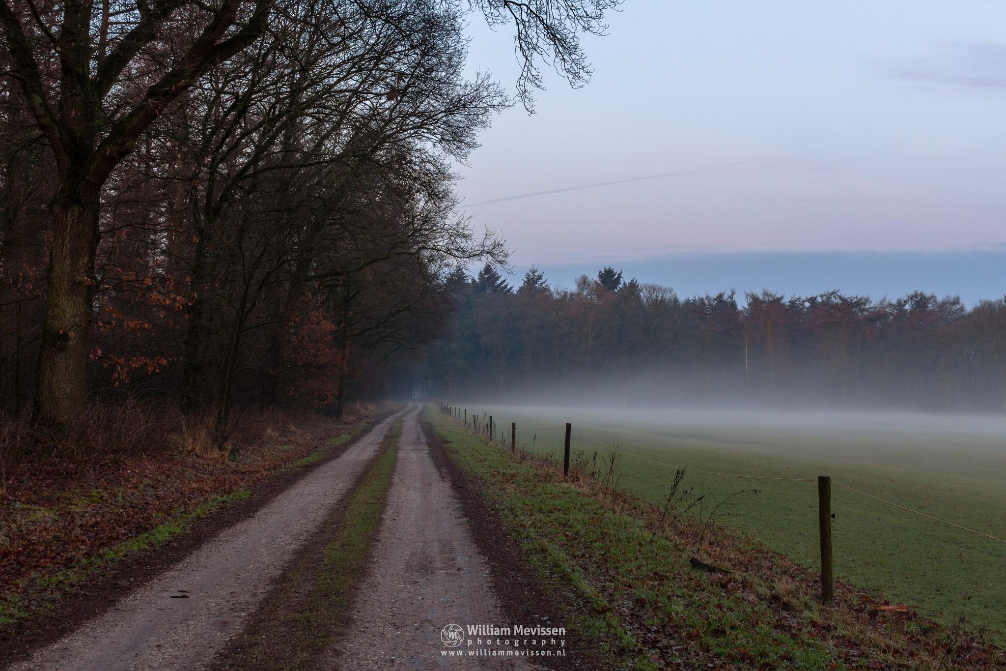 Rural Dirt Road by William Mevissen