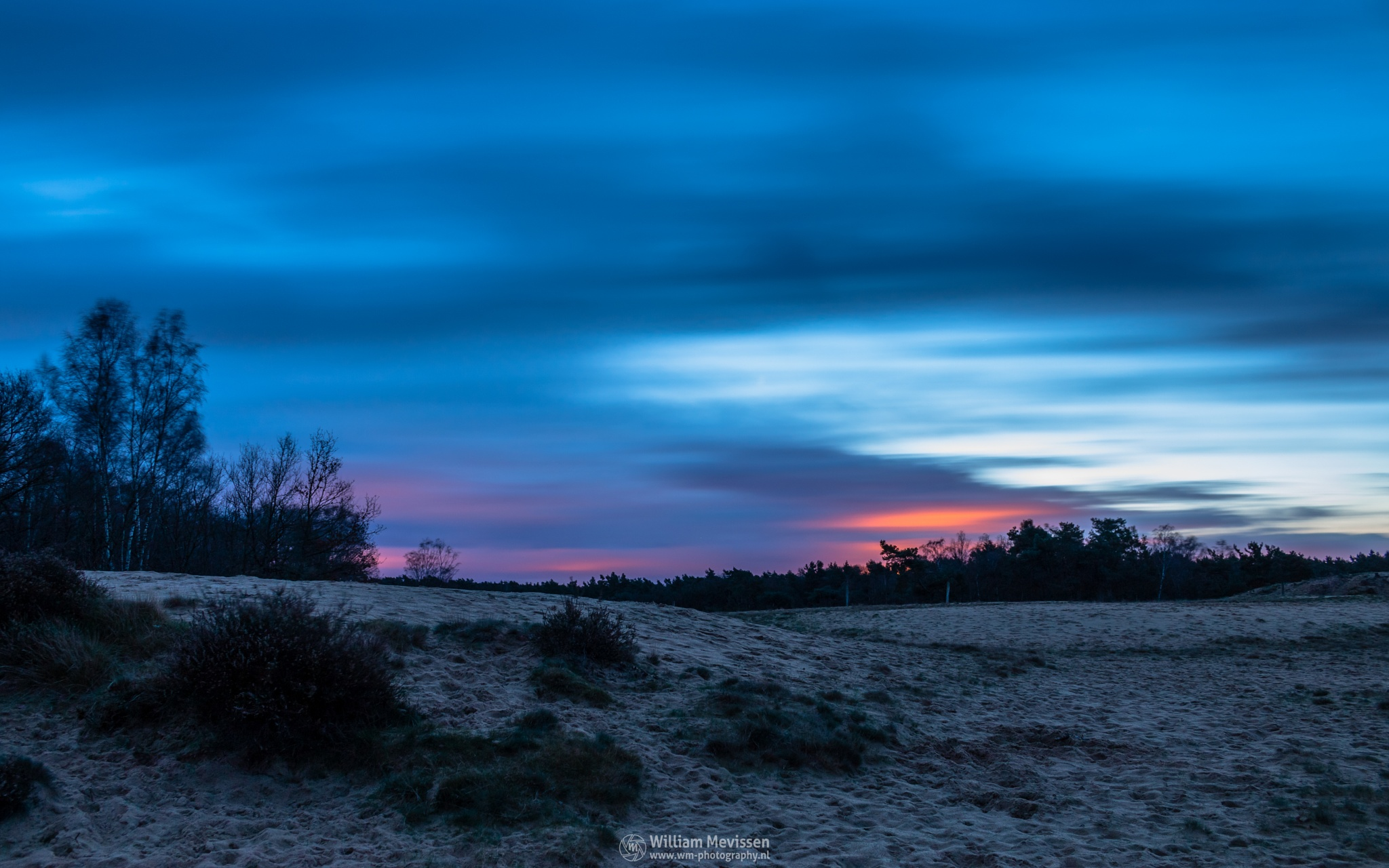 Photo in Landscape #bergerheide #forest #woods #heathland #maasduinen #limburg #noord-limburg #nieuw-bergen #bergen #national park #nature #sand #dunes #sanddunes #tree #trees #sky #clouds #twilight #dawn #le #long exposure #80 seconds