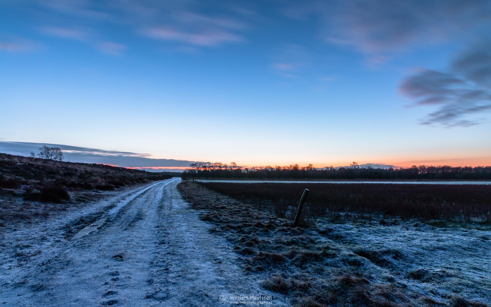 Photo in Landscape #bergerheide #forest #woods #heathland #maasduinen #limburg #noord-limburg #nieuw-bergen #bergen #national park #nature #sand #dunes #sanddunes #tree #trees #sky #clouds #twilight #snow #winter #le #long exposure #dirt road #road