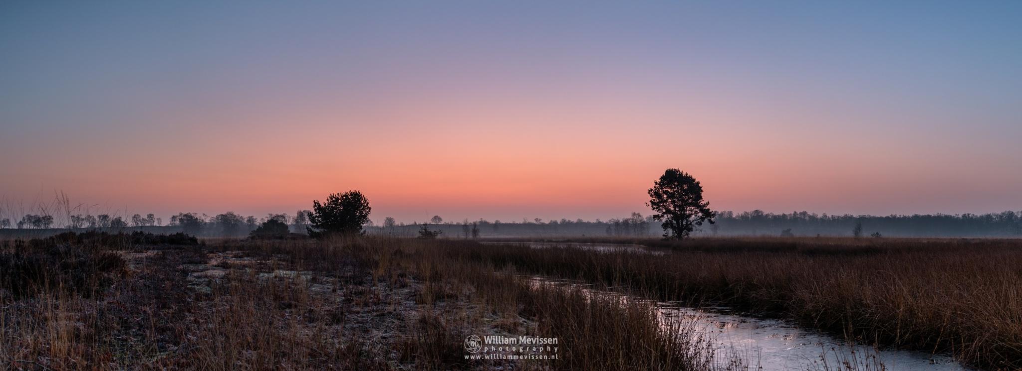 Panorama 'Misty Frosty Twilight'  by William Mevissen