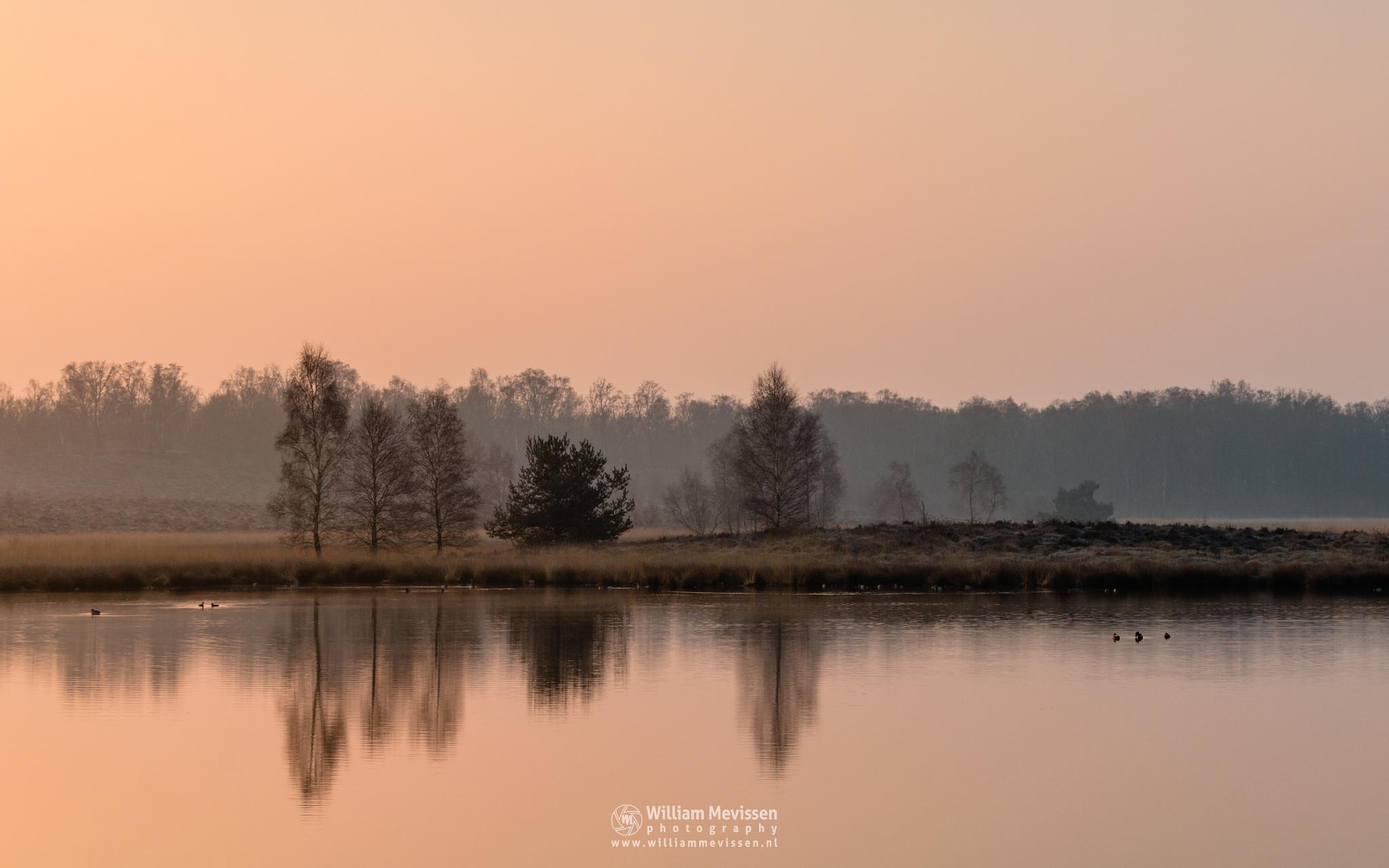 Morning Glow by William Mevissen