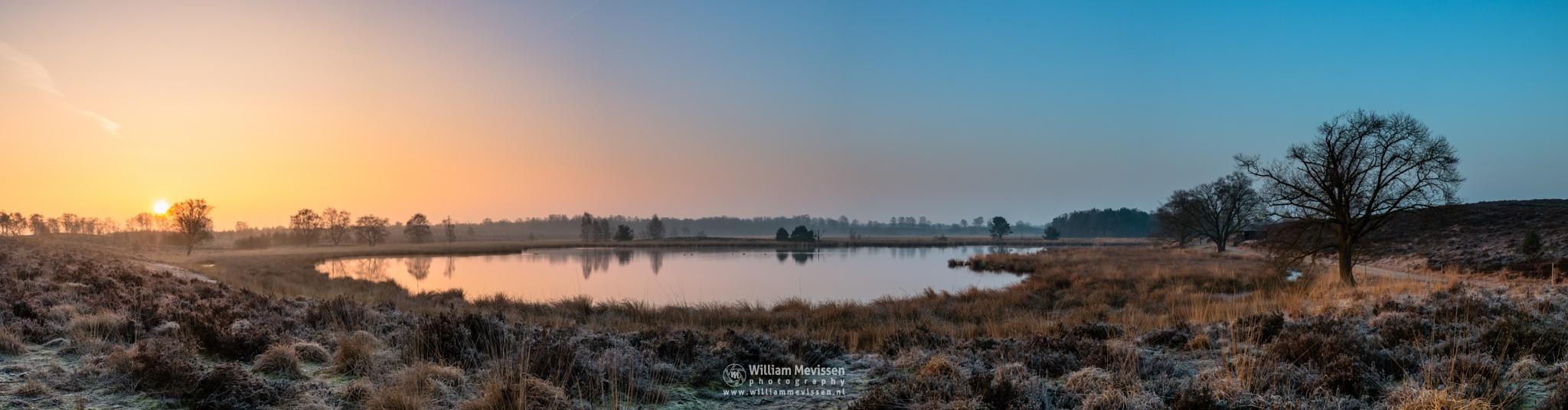 Panorama 'Misty Sunrise Pikmeeuwenwater' by William Mevissen