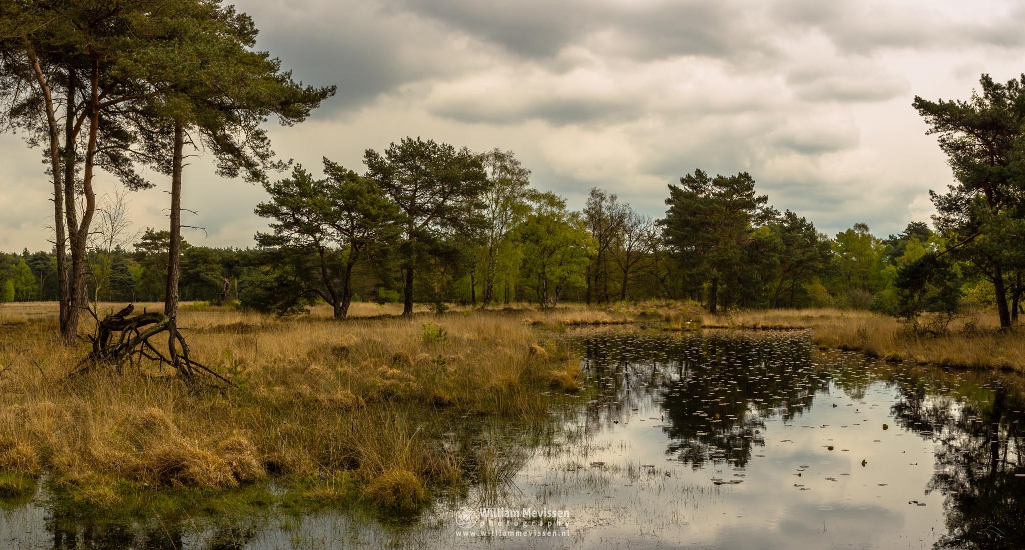 Panorama 'Ravenvennen'  by William Mevissen