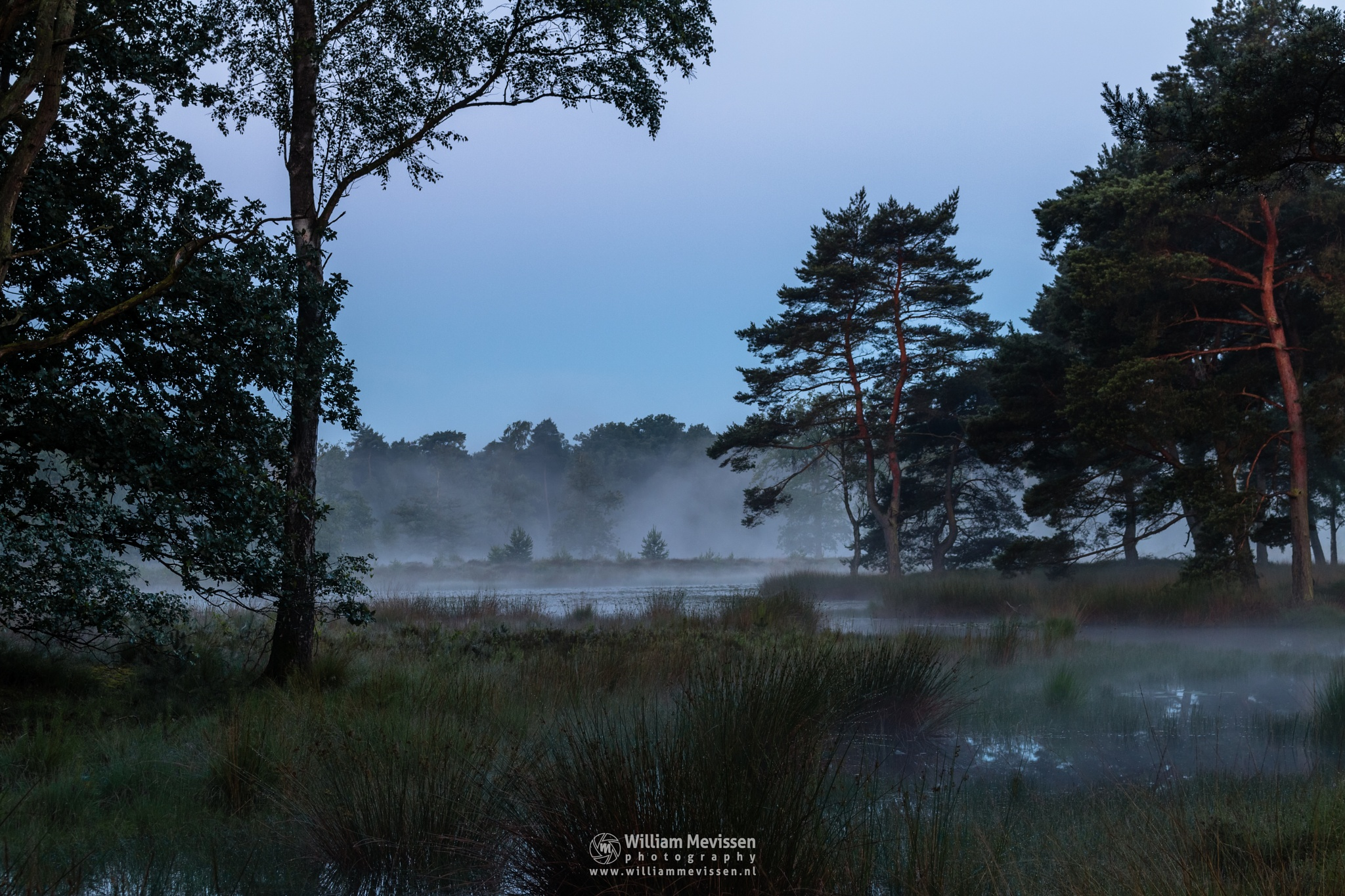 Misty Morning Ravenvennen by William Mevissen