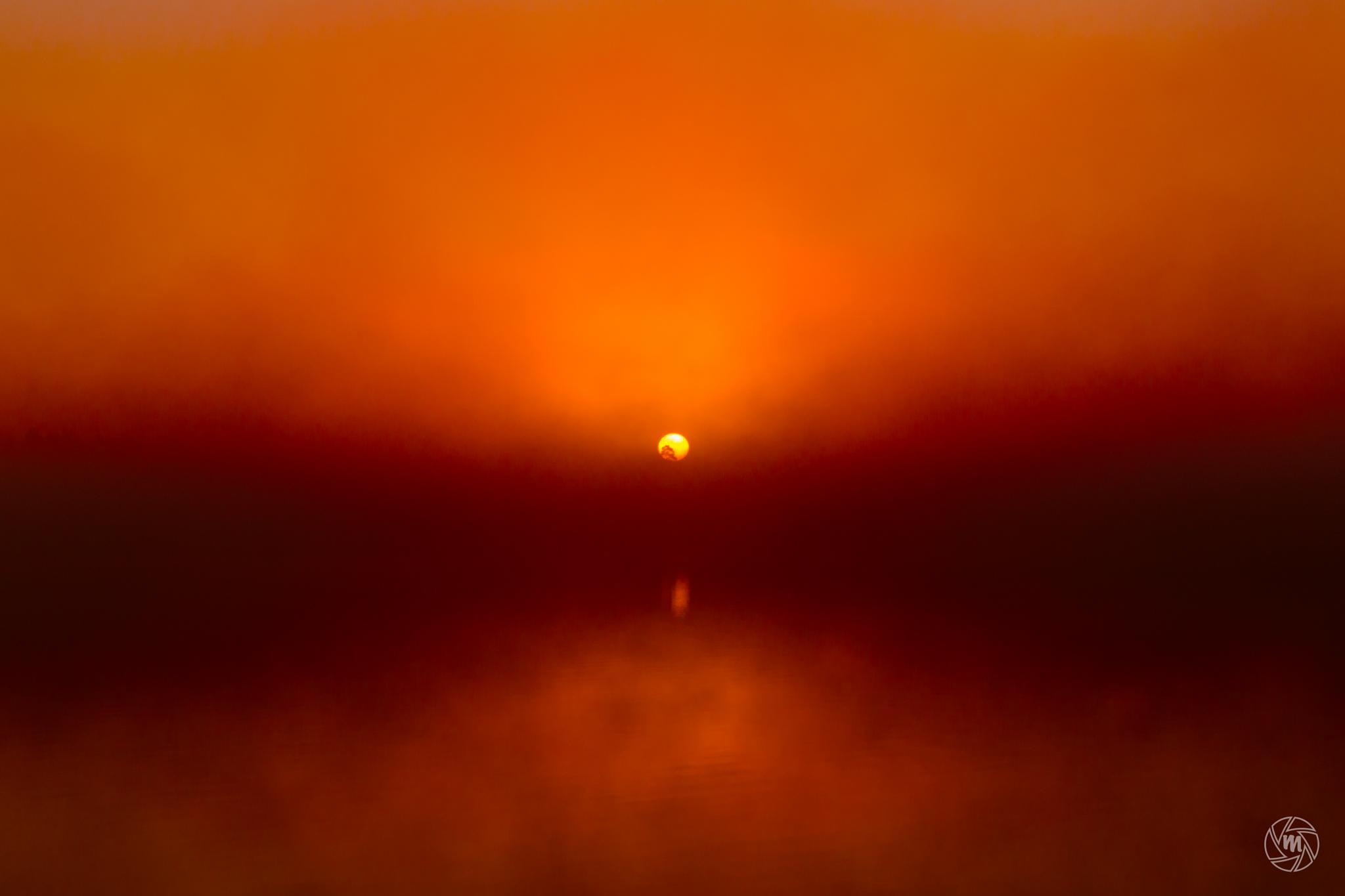 Foggy Red Sunrise by William Mevissen