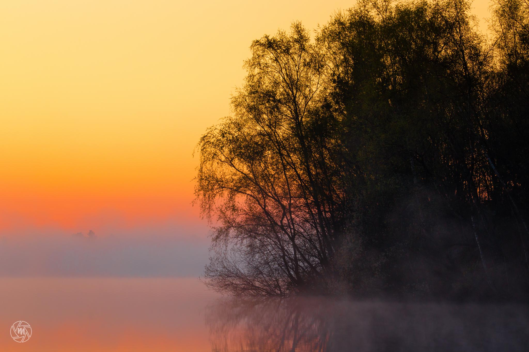 Foggy Sunrise Silhouettes by William Mevissen