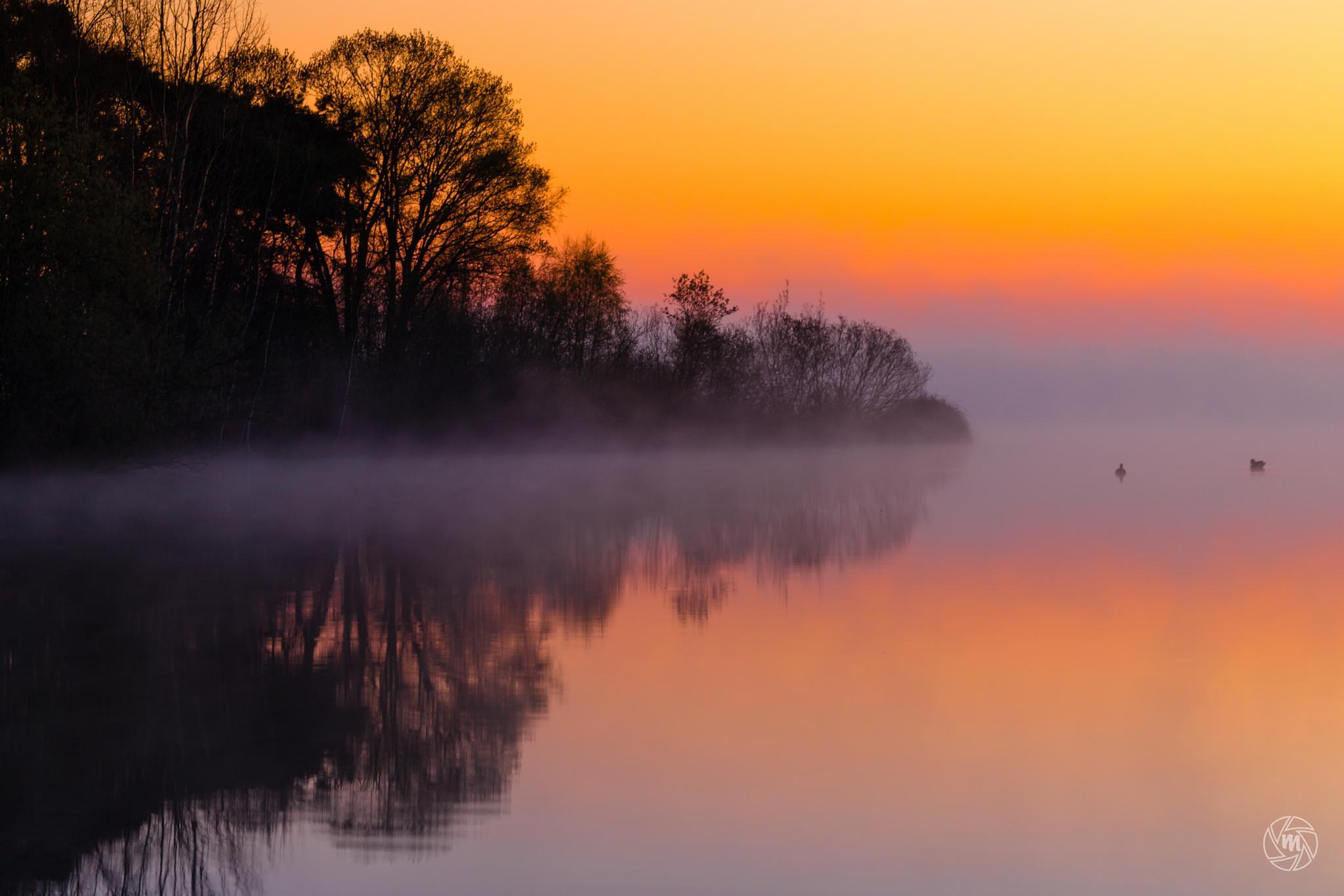 Foggy Sunrise Reflections by William Mevissen