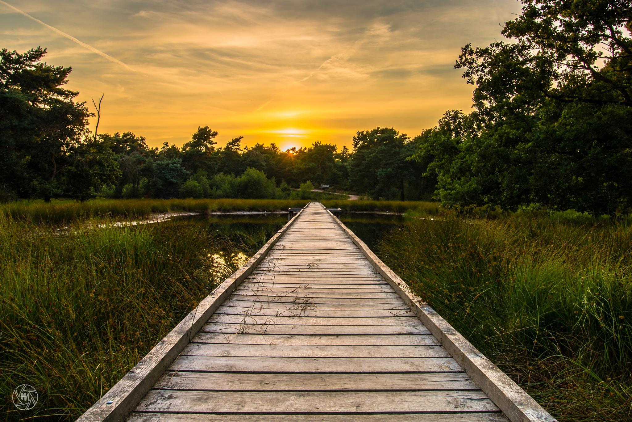 Sunset Walkway by William Mevissen