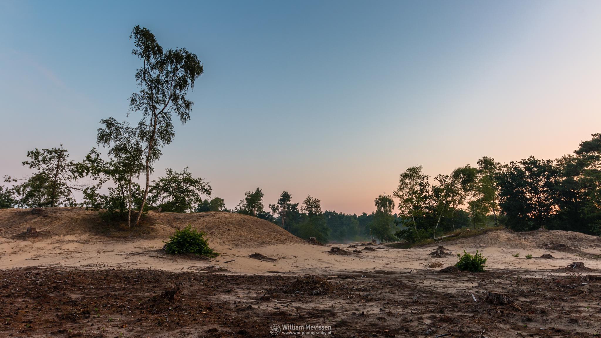 Desolate Land by William Mevissen