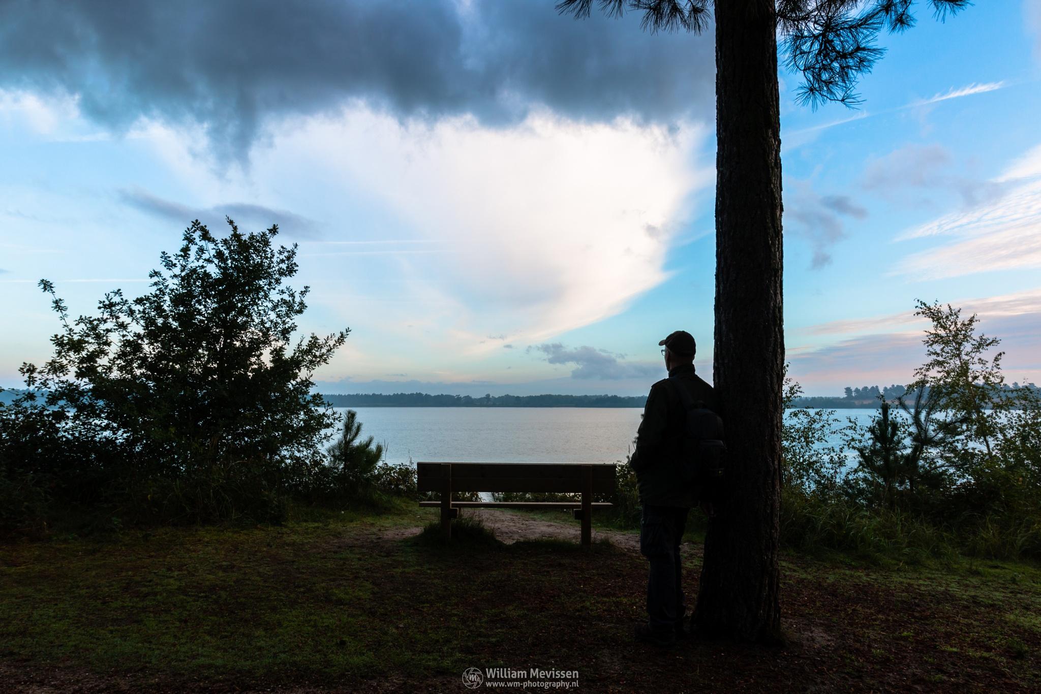 Enjoying The View by William Mevissen