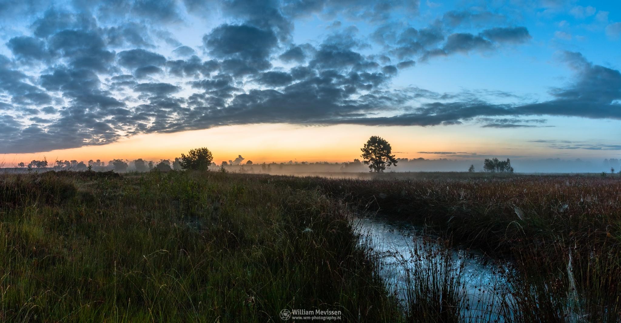 Photo in Landscape #sunrise #orange #yellow #blue #sunlight #light #tree #trees #sky #serene #peaceful #clouds #landgoed #estate #de hamert #hamert #landgoed de hamert #twilight #mist #misty #fog #foggy #maasduinen #limburg #noord-limburg #wellerlooi #national park #limburgs landschap
