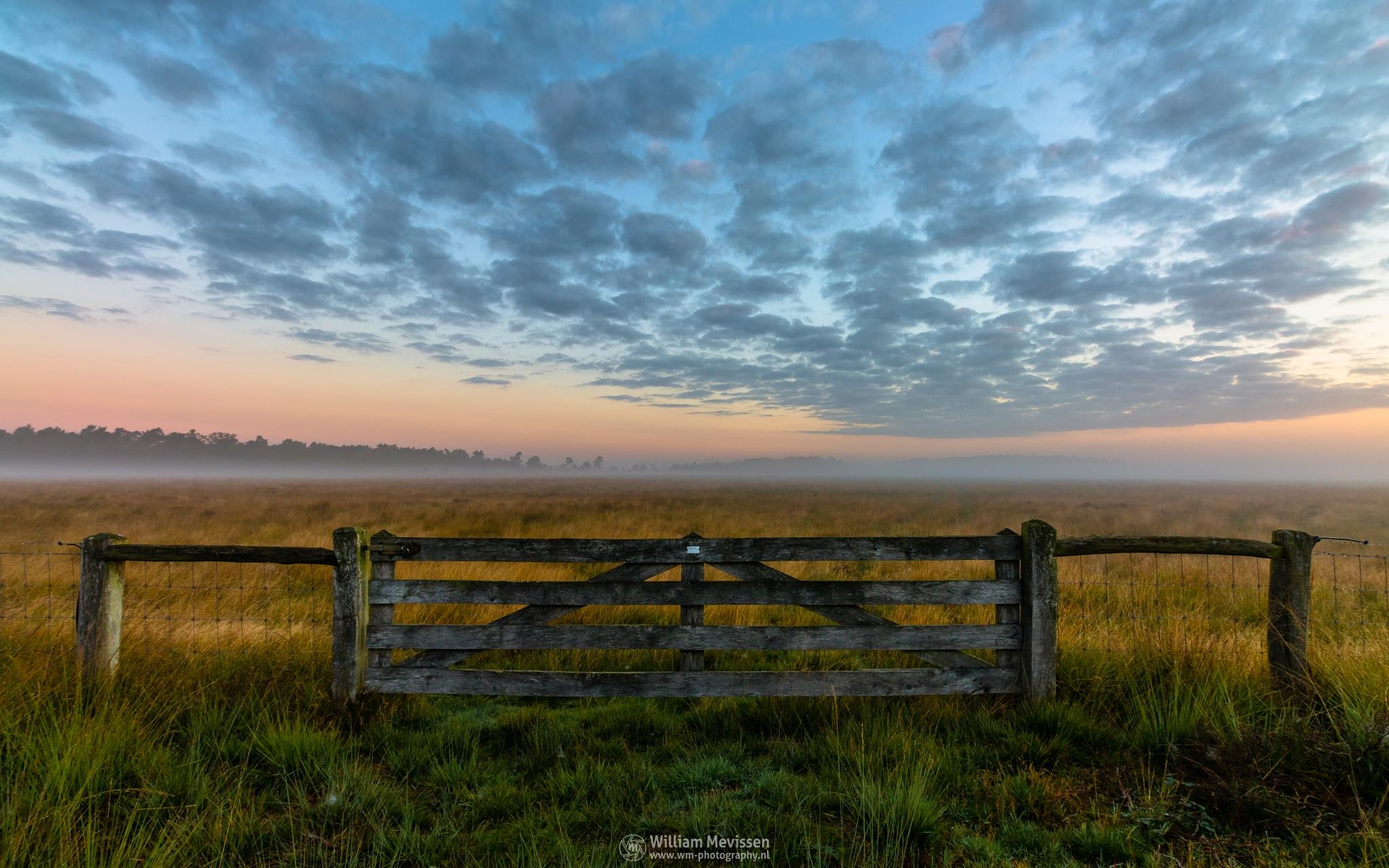 Misty Morning Gate by William Mevissen