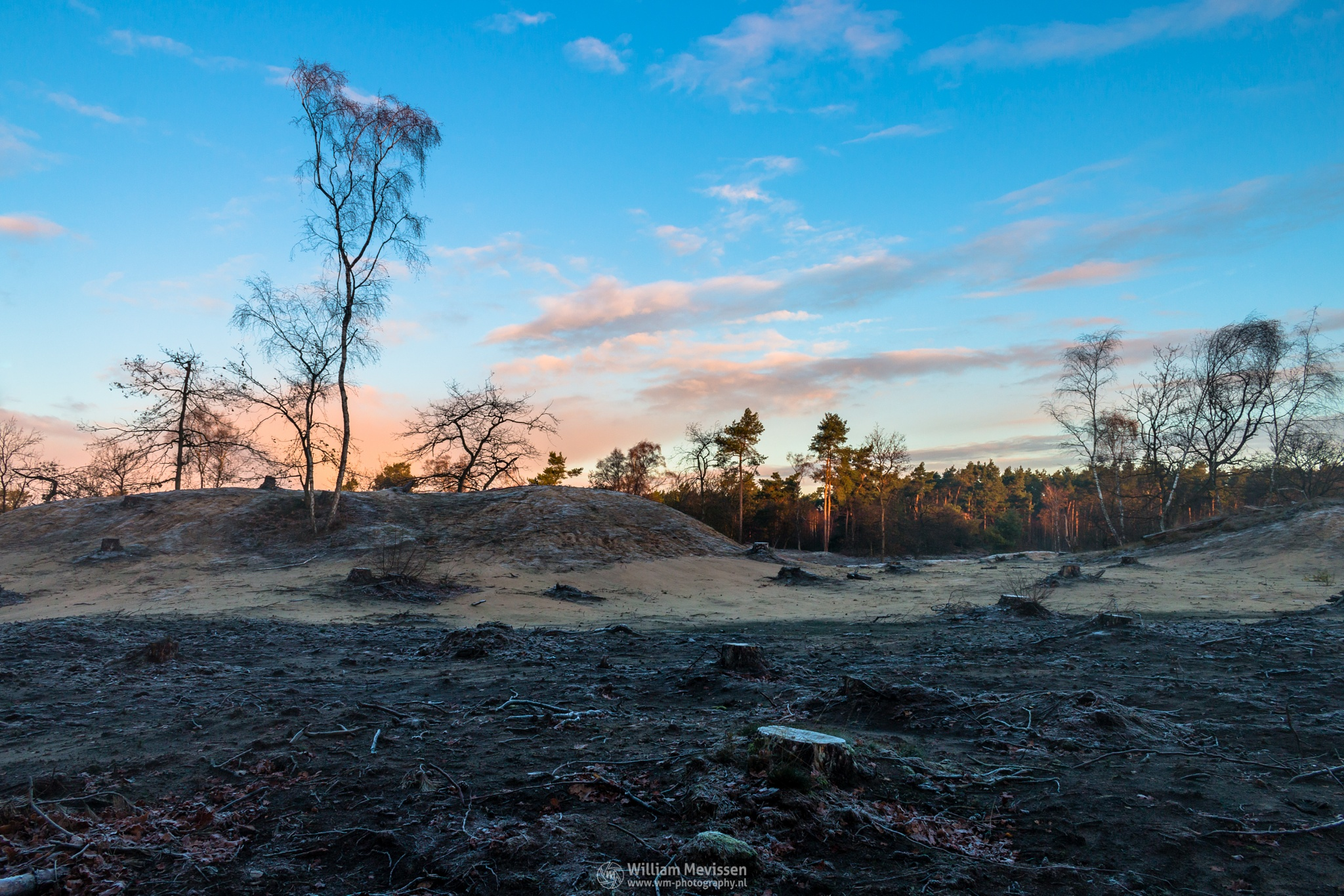 Photo in Landscape #tree #desolate #desolateland #silhouette #boshuizerbergen #boschhuizerbergen #limburg #noord-limburg #venray #nature #nature reserve #sand #shifting sand #limburgs landschap #netherlands #twilight #sunrise #frost #cold #autumn #sky #clouds #blue #orange #yellow #red