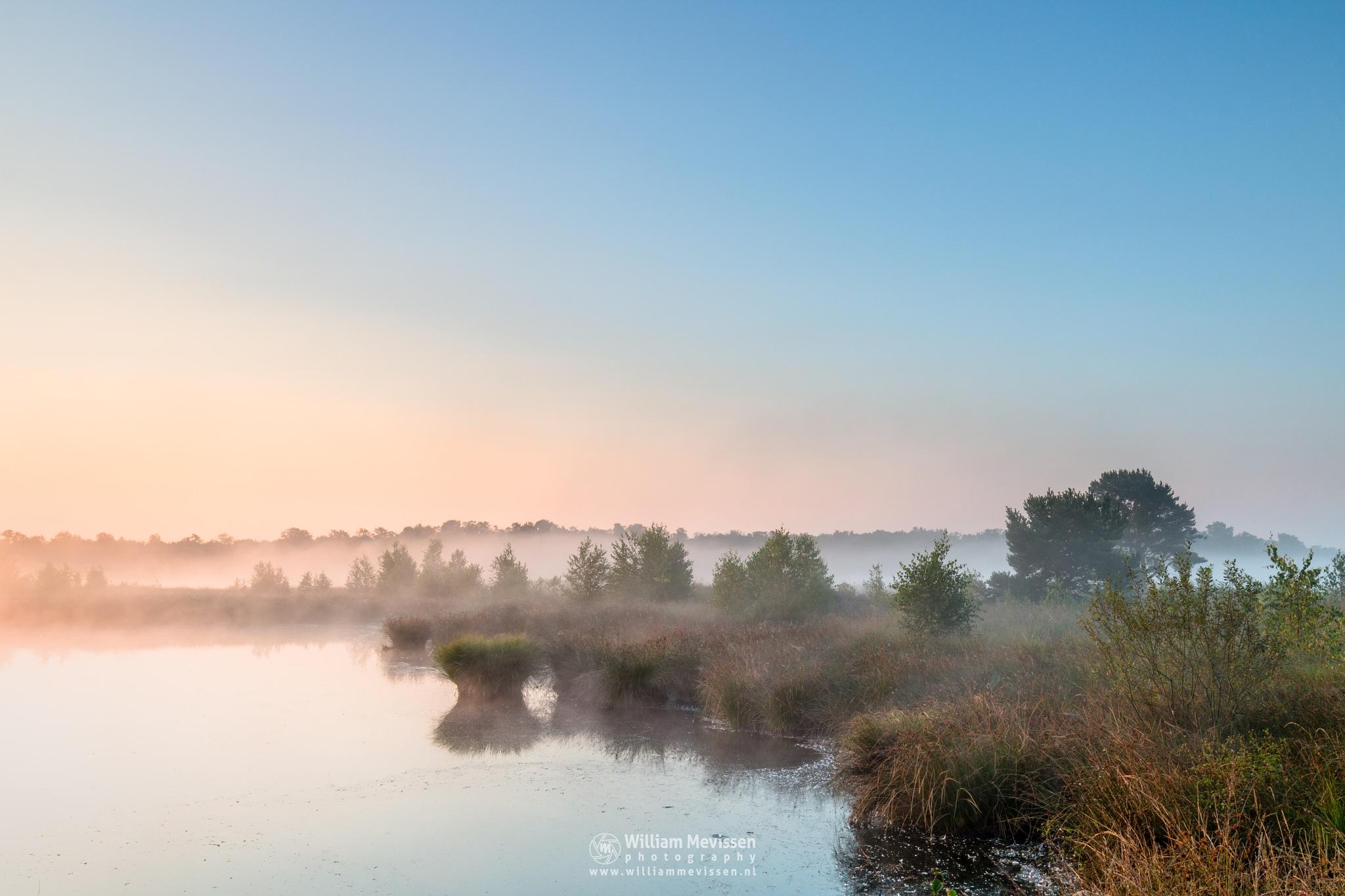 Misty Sunrise Pikmeeuwenwater  by William Mevissen