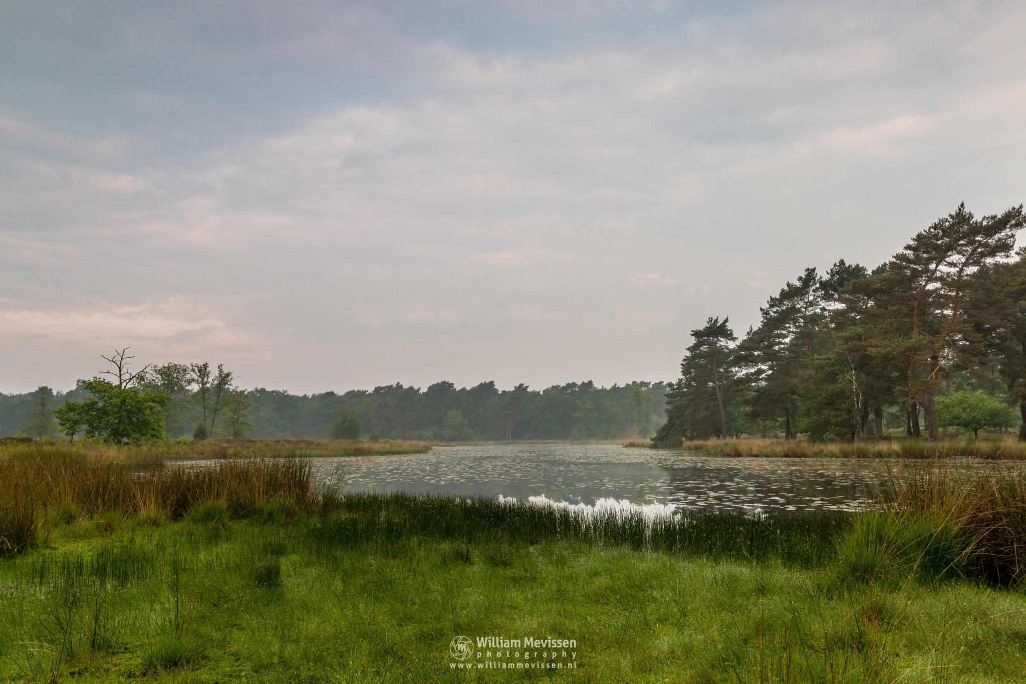 Cloudy Ravenvennen by William Mevissen