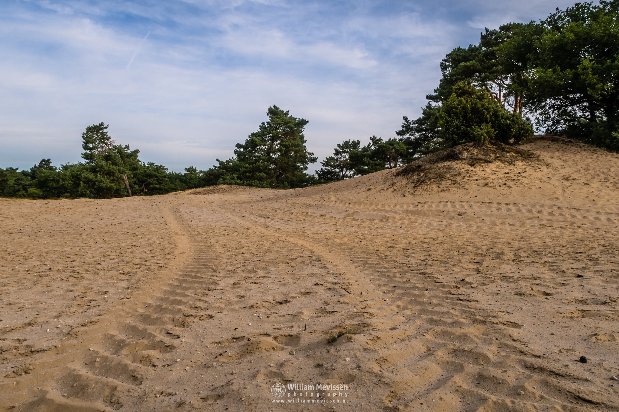 Tire Tracks by William Mevissen