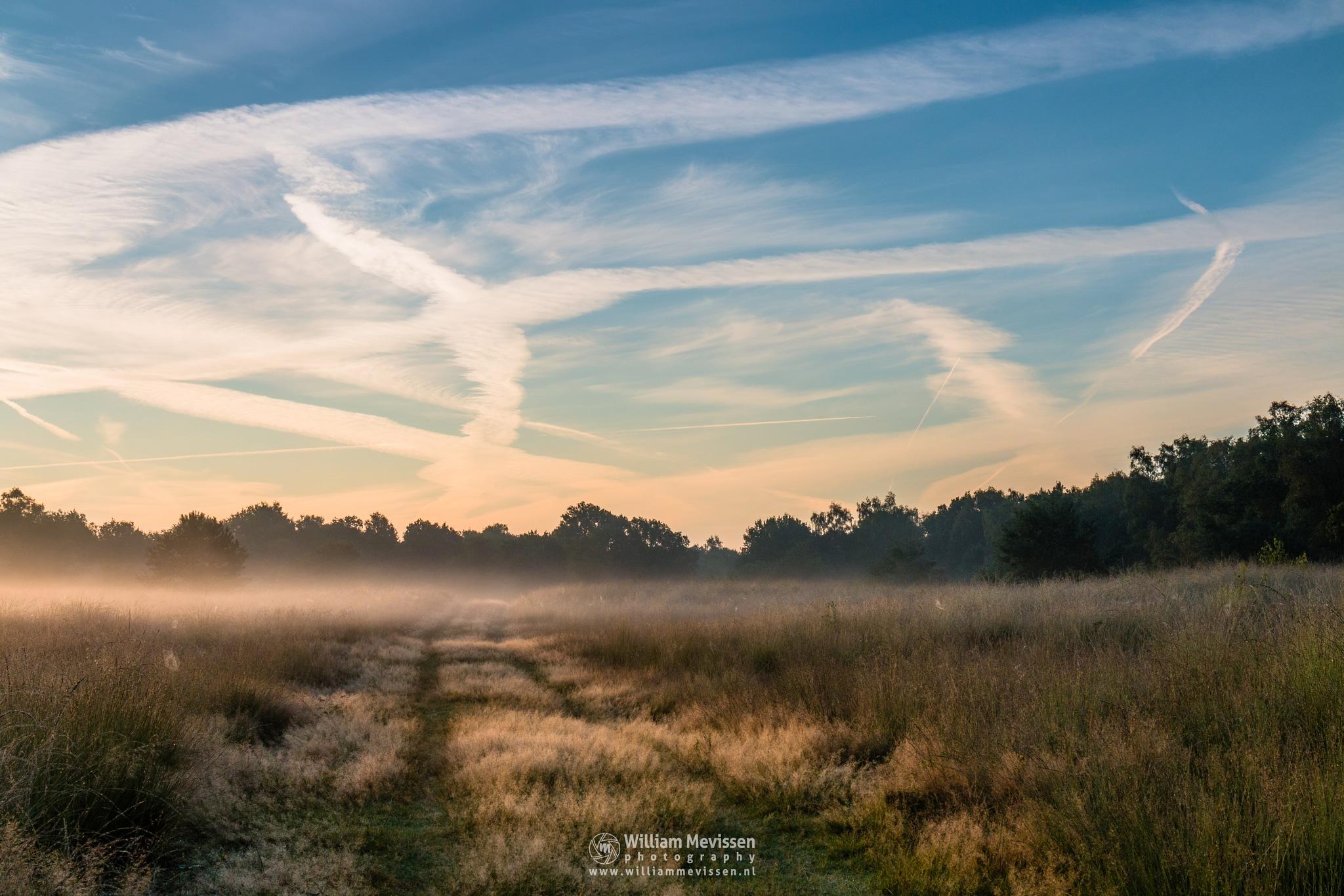 Misty Sunlight by William Mevissen