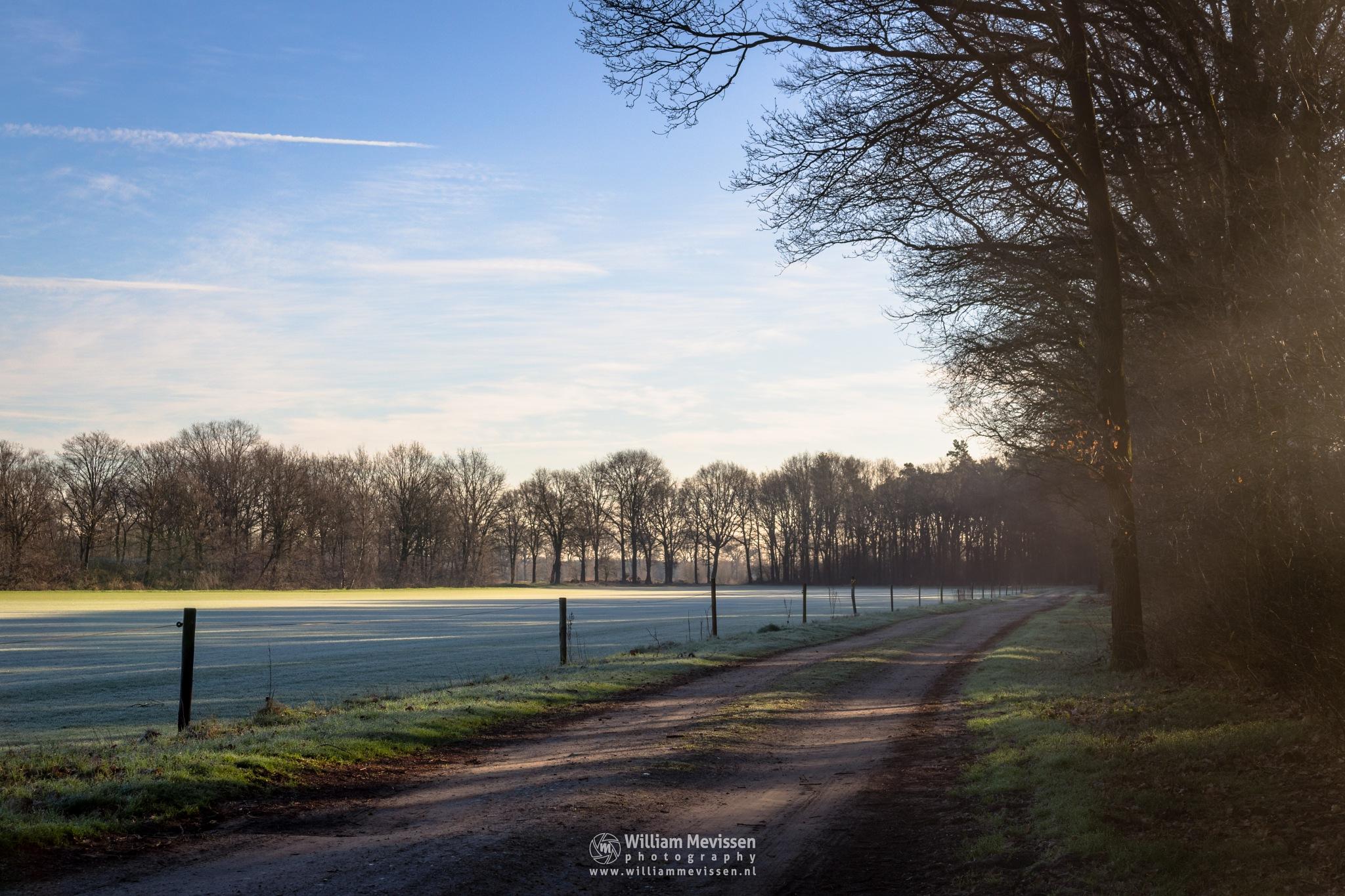 Cold Spring Morning by William Mevissen