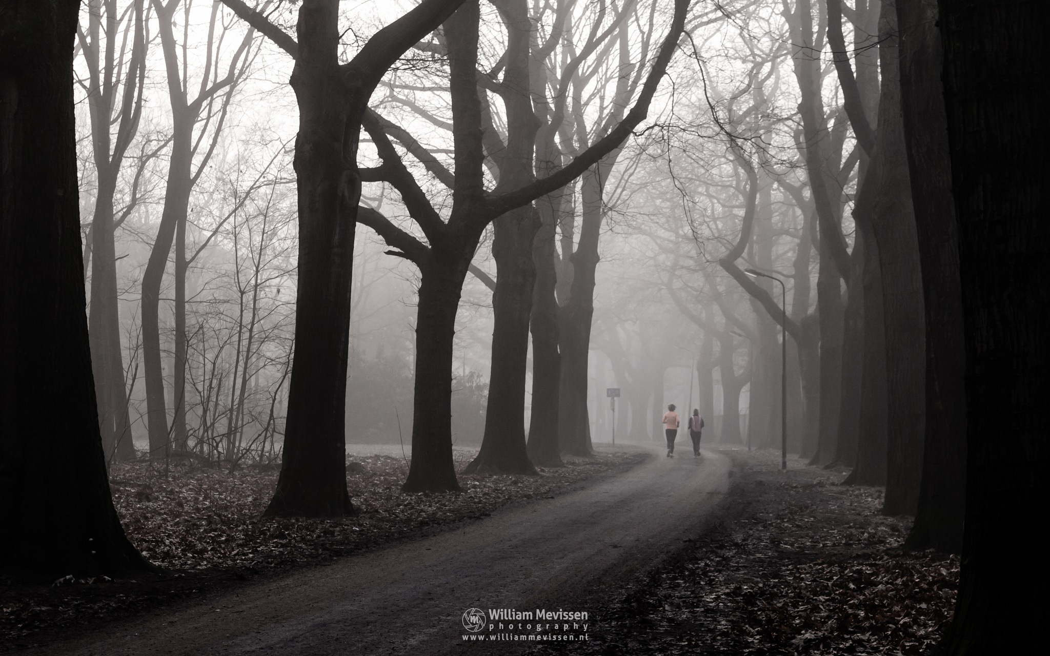 Jogging by William Mevissen
