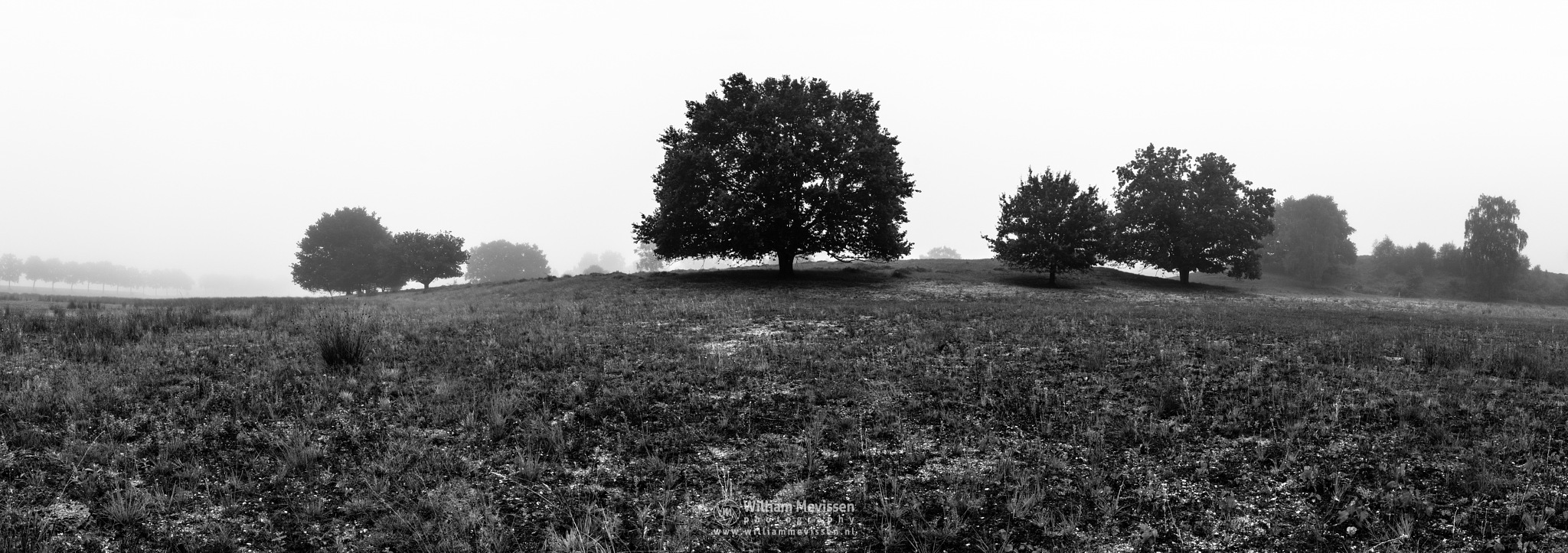Panorama Misty Silhouettes by William Mevissen