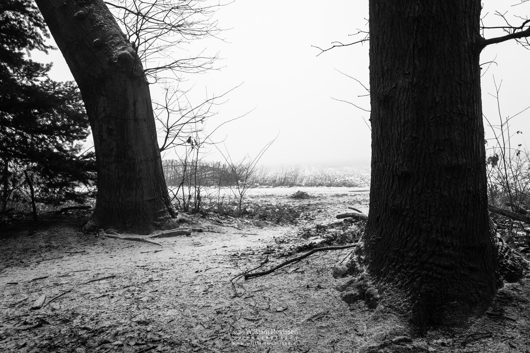 Winter Gate by William Mevissen