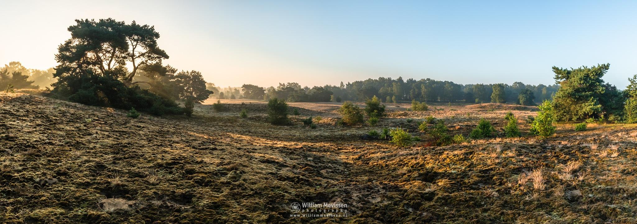Panorama - Sunrise Bergerheide by William Mevissen