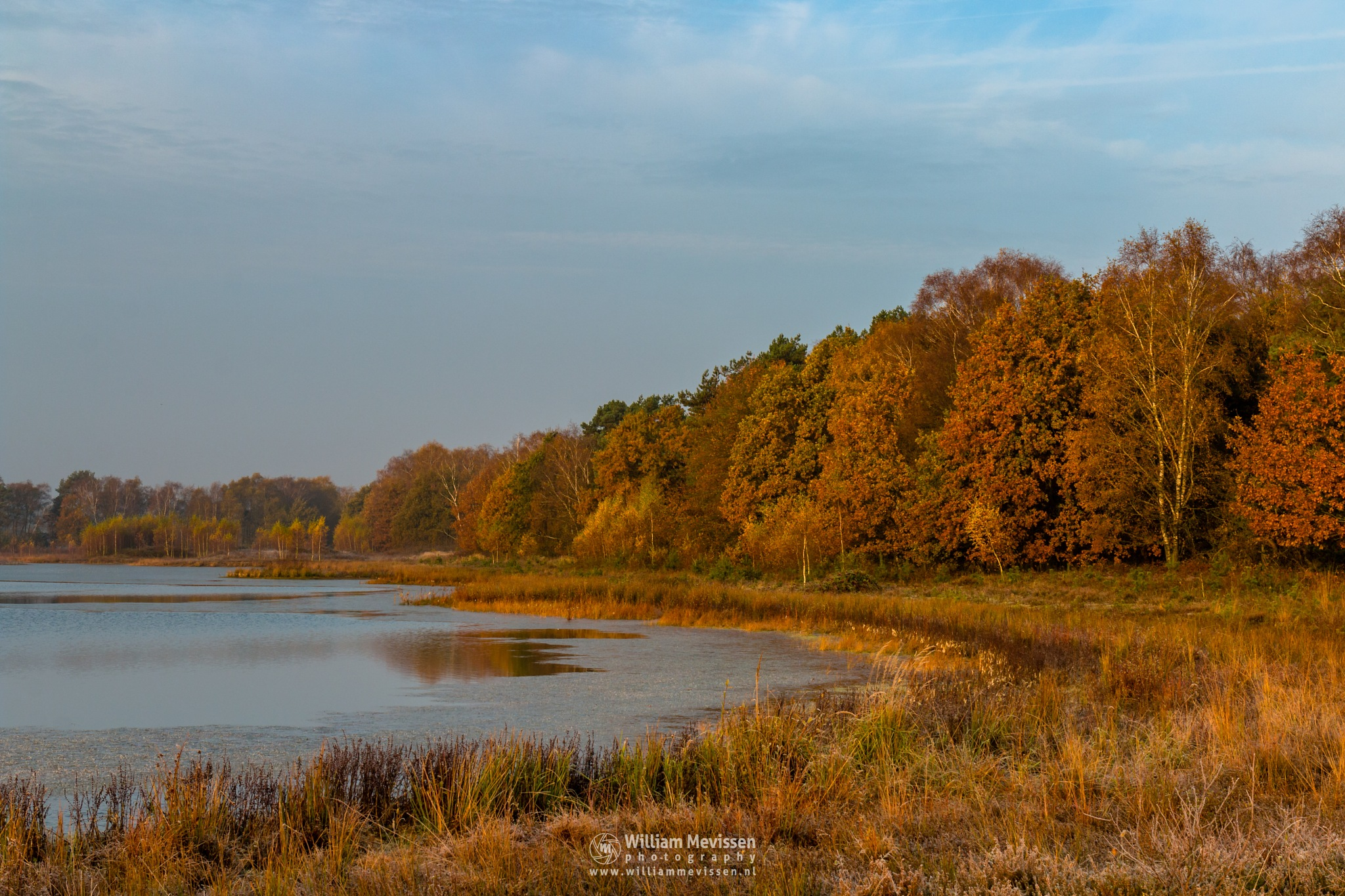 Warm Autumn Light by William Mevissen