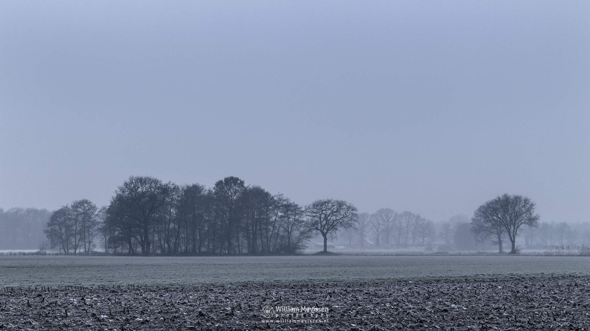 Photo in Landscape #venray #brabander #limburg #noord-limburg #merselo #nature #trees #forest #netherlands #winter #mist #rural #agriculture #farming