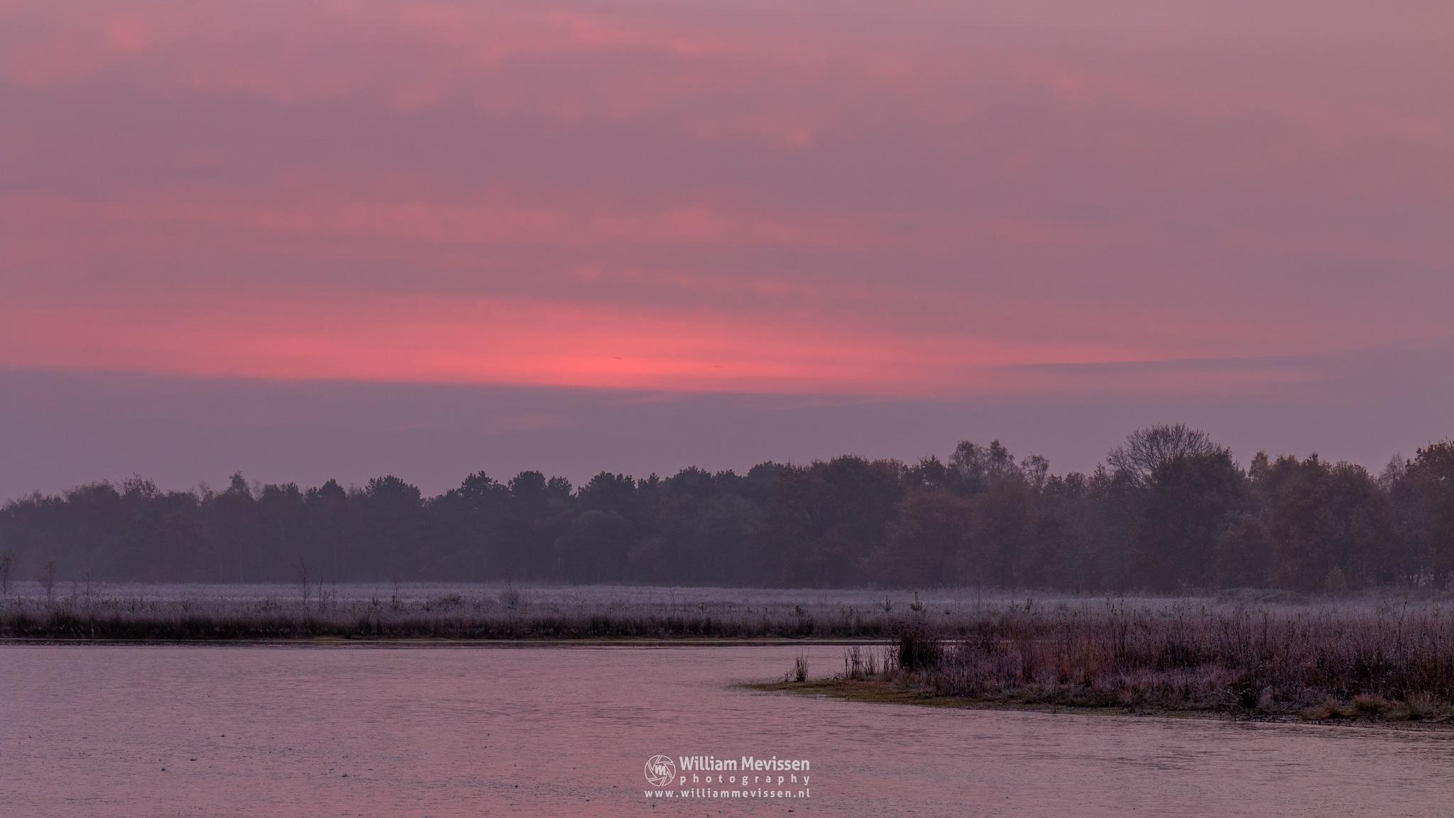 Dawn at Lelieven by William Mevissen