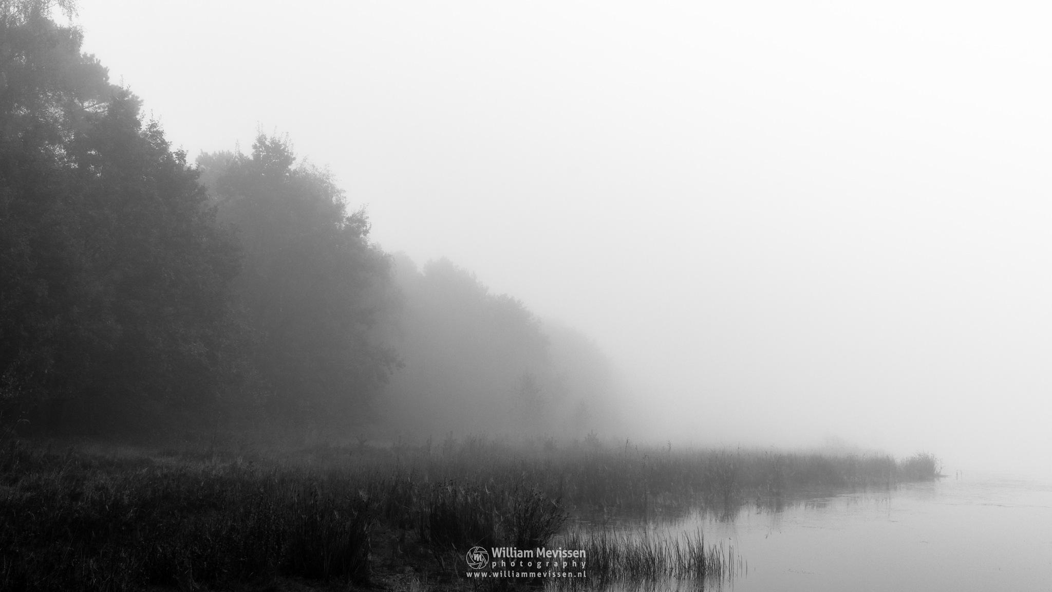 Vanishing Fog by William Mevissen