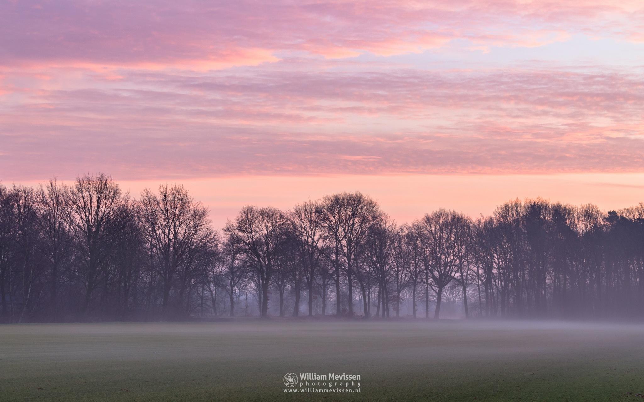 Misty Rural Twilight by William Mevissen
