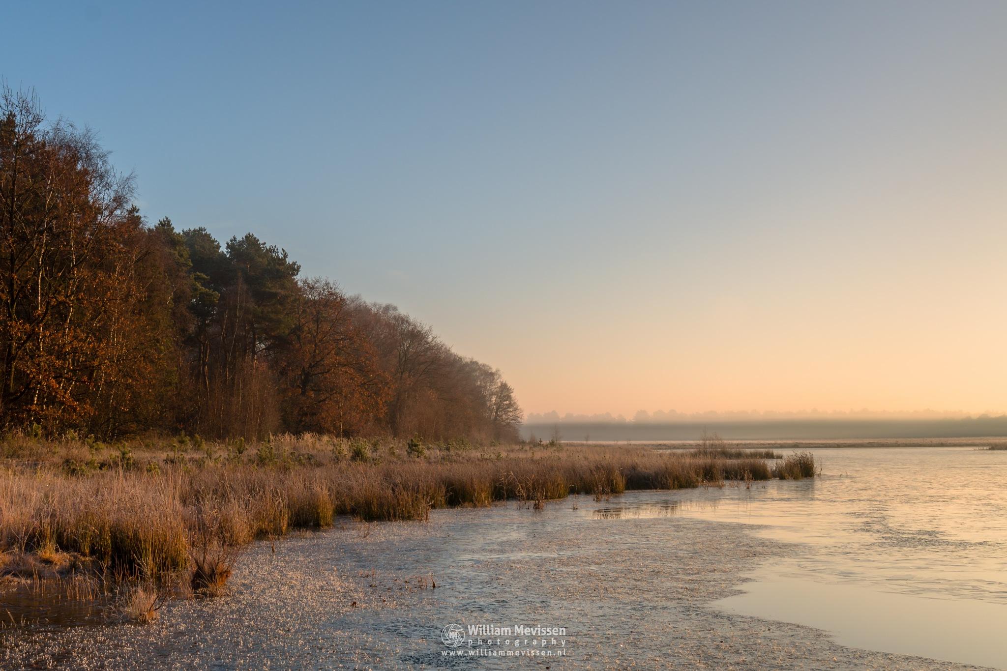 Sunrise Fen by William Mevissen