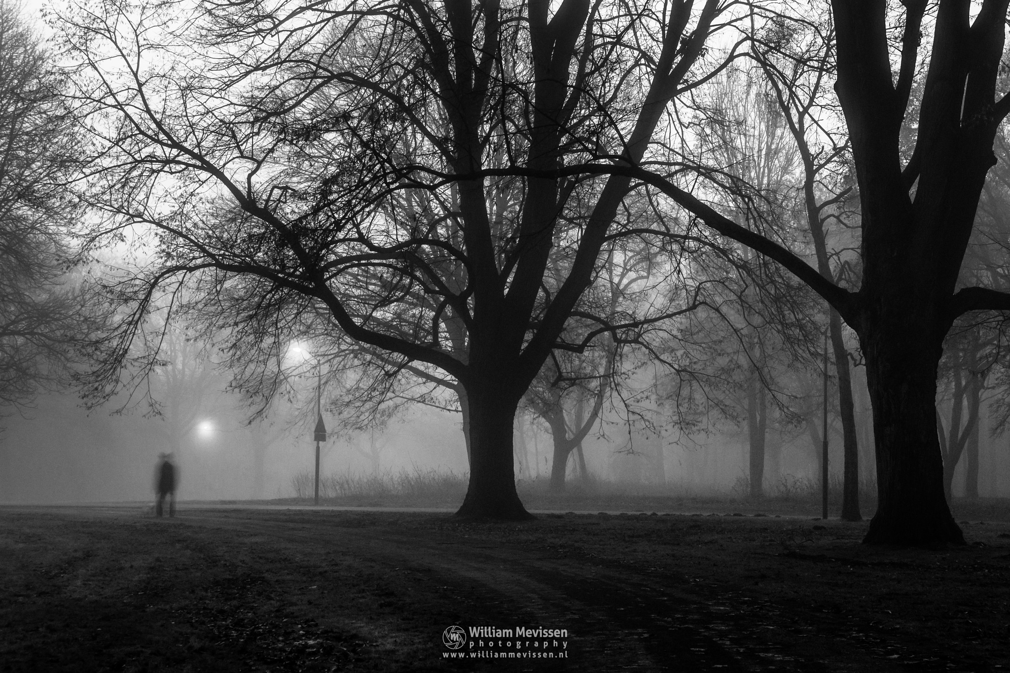 Mysterious Morning by William Mevissen