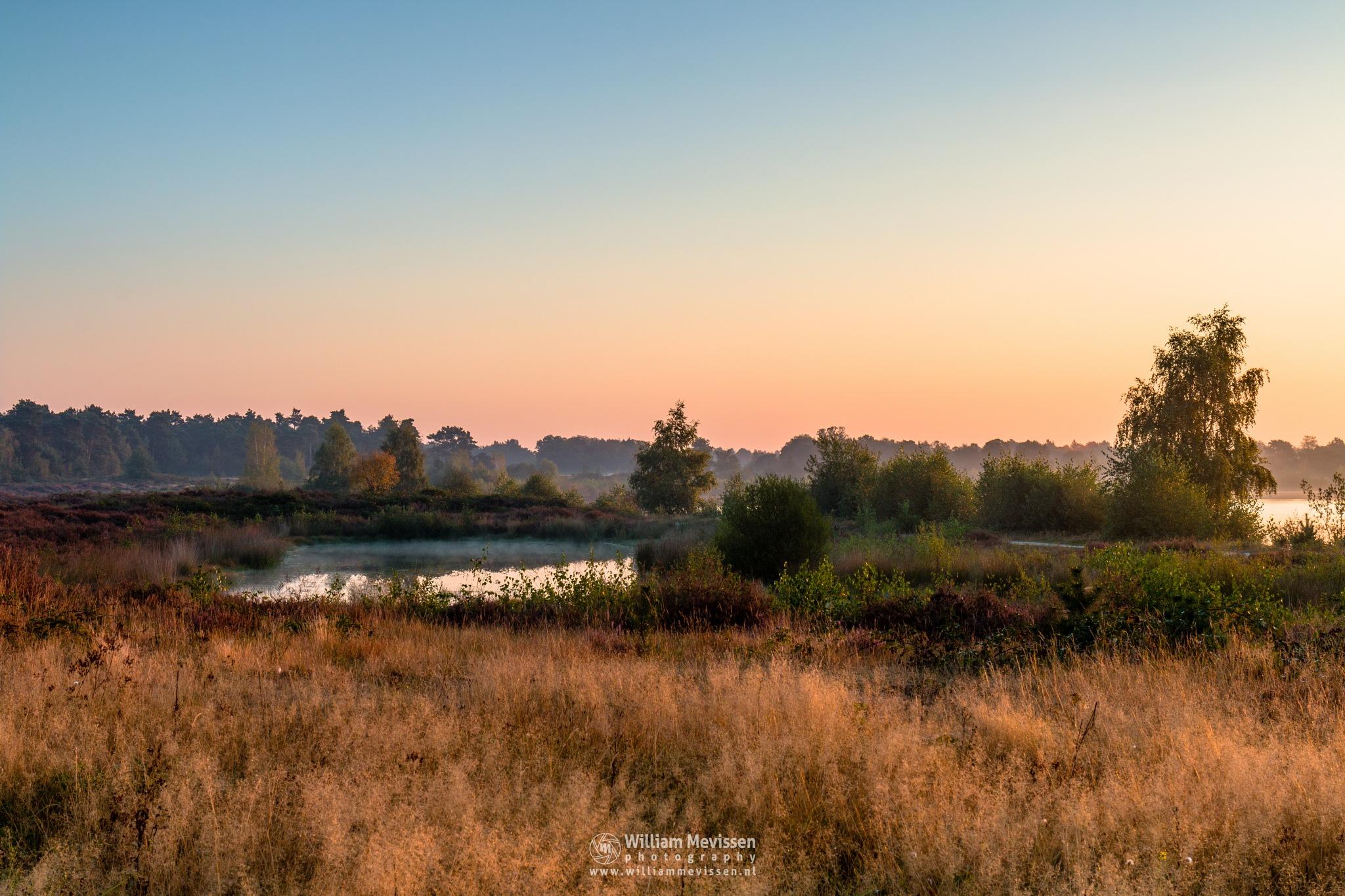 Around The Lake by William Mevissen