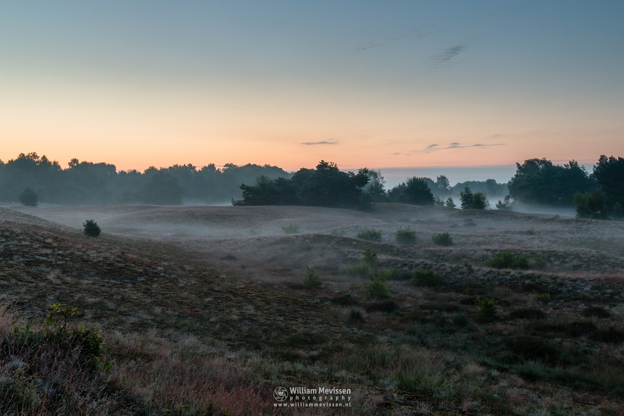A Touch Of Mist by William Mevissen