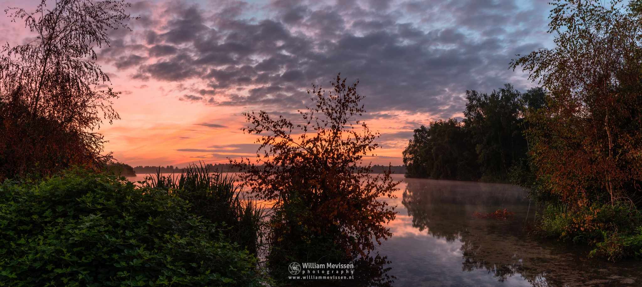 Photo in Landscape #trees #pine #pine forest #forest #lake #reindersmeer #maasduinen #limburg #noord-limburg #well #national park #nature #green #twilight #sunrise #bay #colors #light