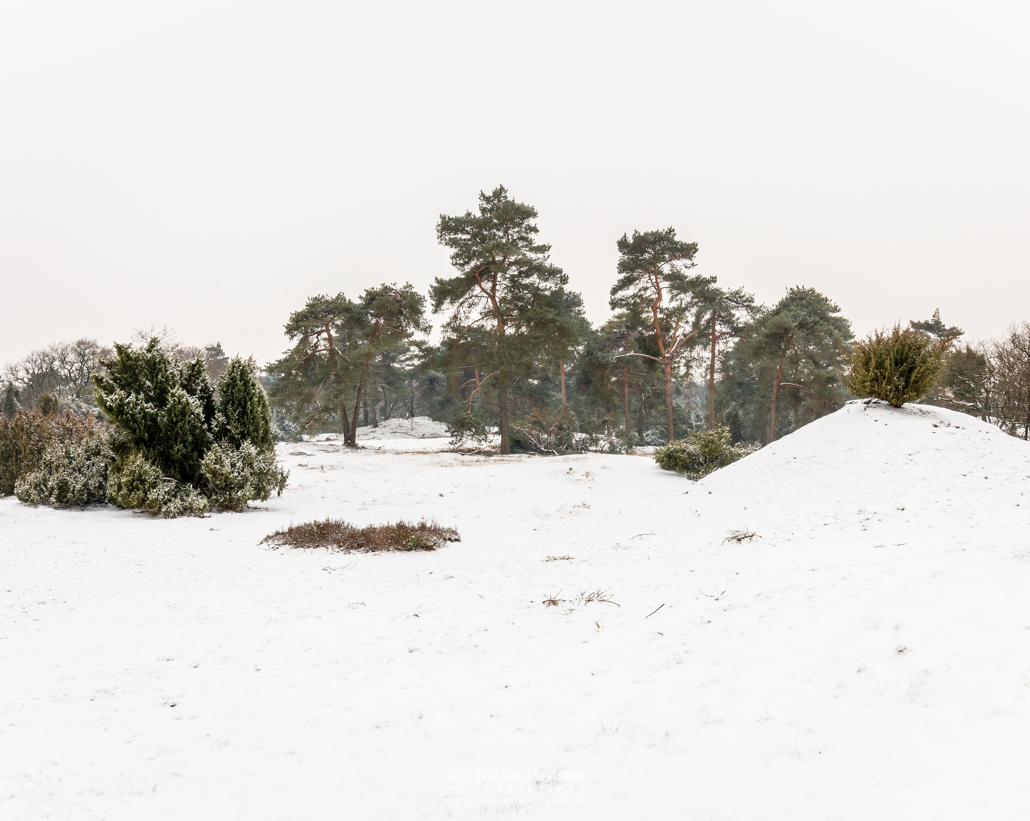 Winterscenery Boshuizerbergen by William Mevissen
