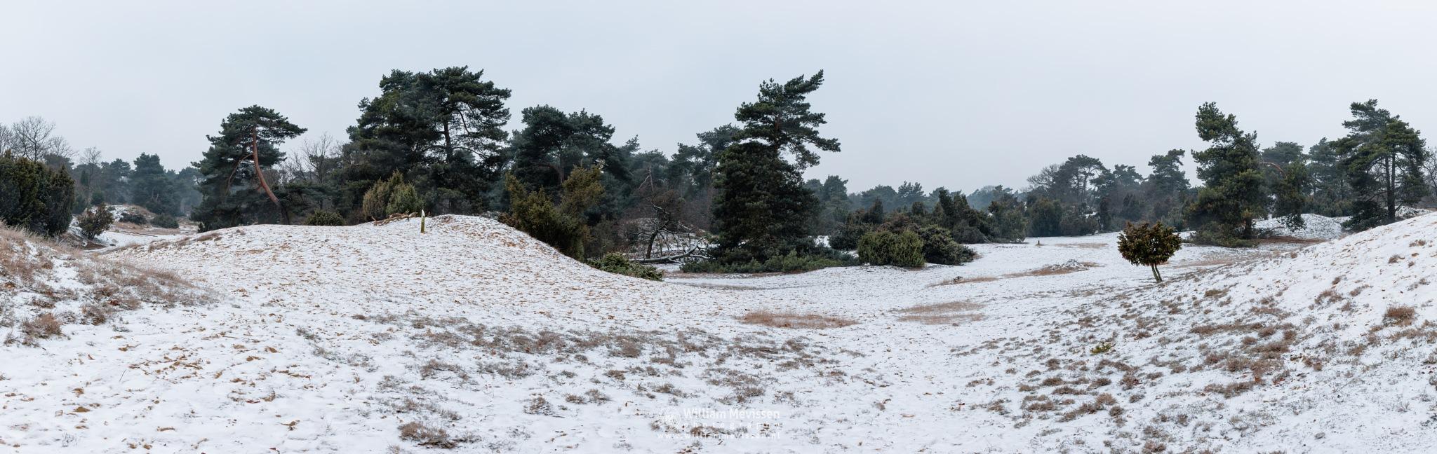 Panorama Boshuizerbergen Winter by William Mevissen