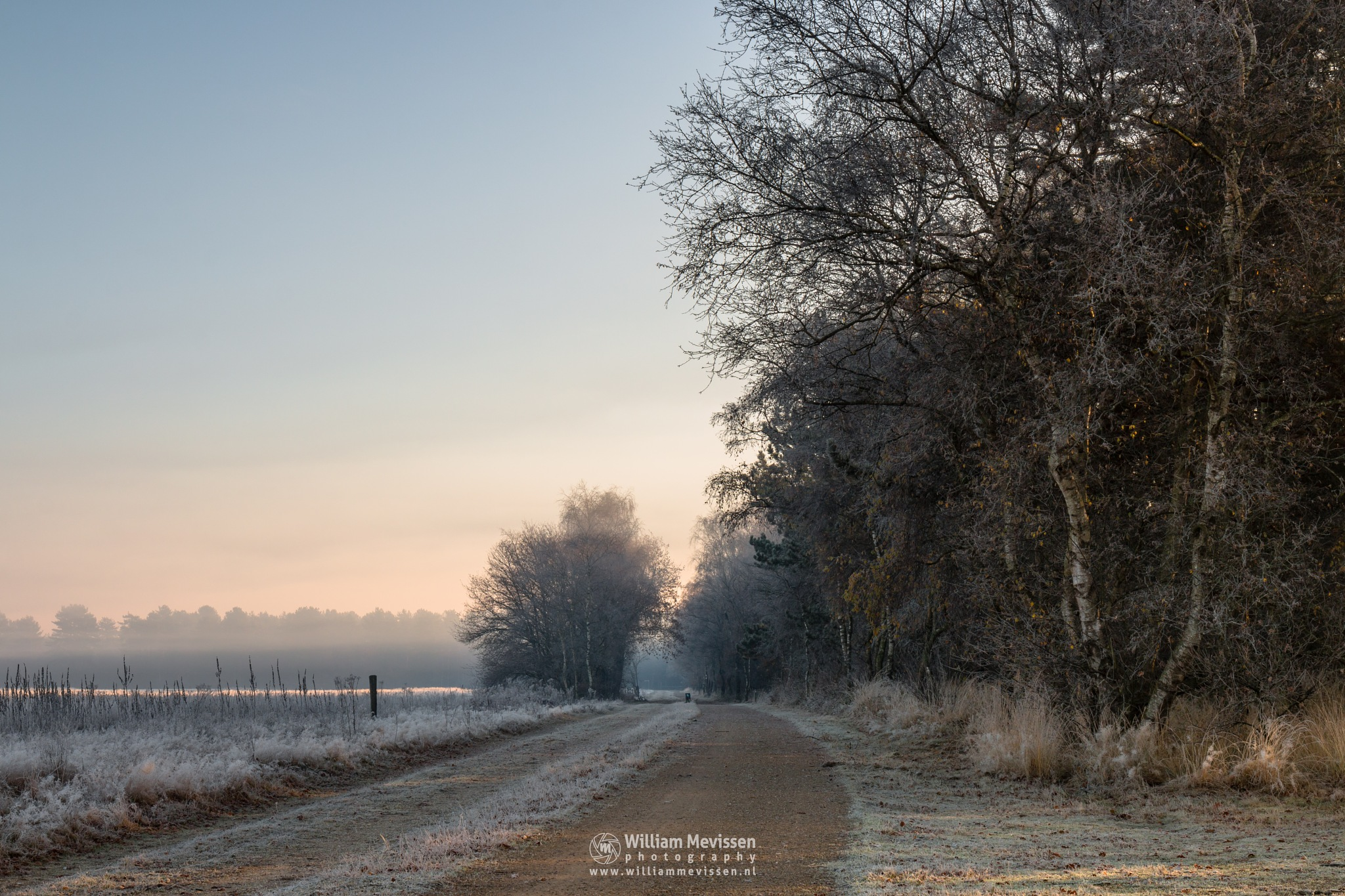 Photo in Random #bergerheide #forest #maasduinen #limburg #noord-limburg #nieuw-bergen #bergen #nature #light #mood #mist #frost #surise #path #winter #fog
