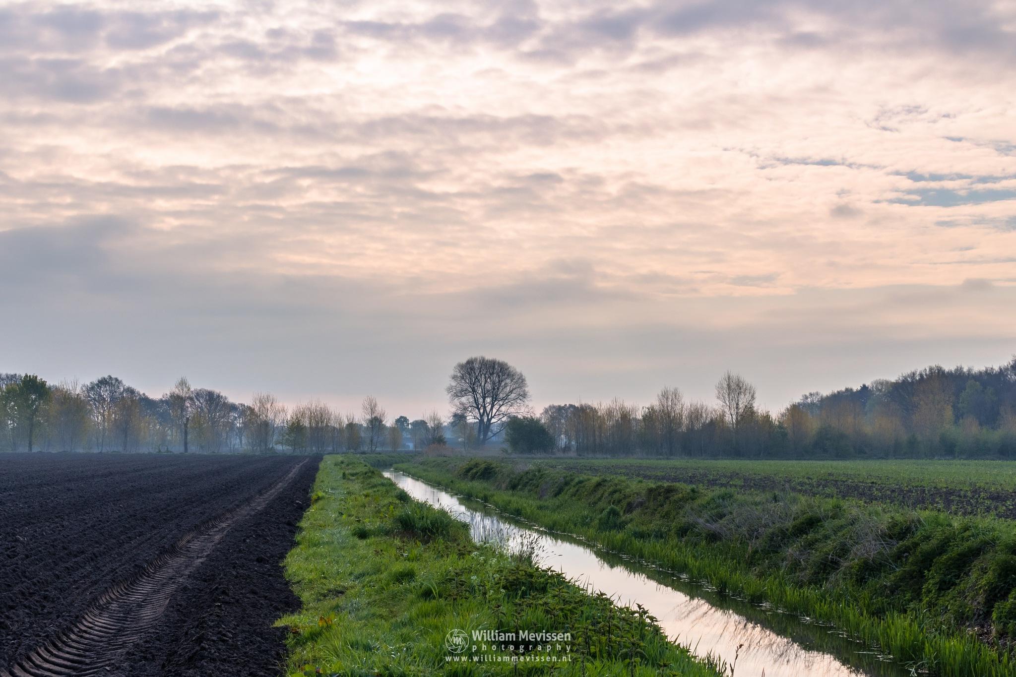 Rural View by William Mevissen