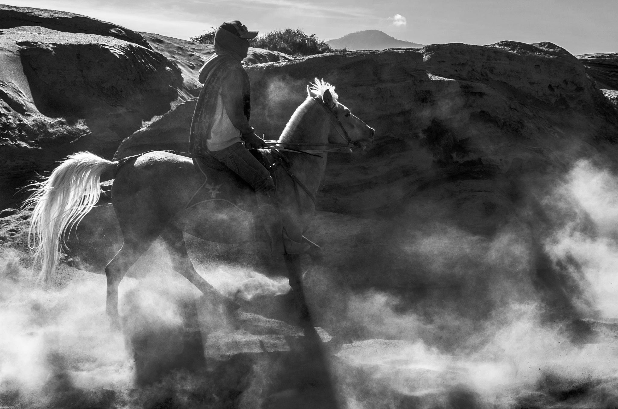 Kuda dan Debu by arthamade
