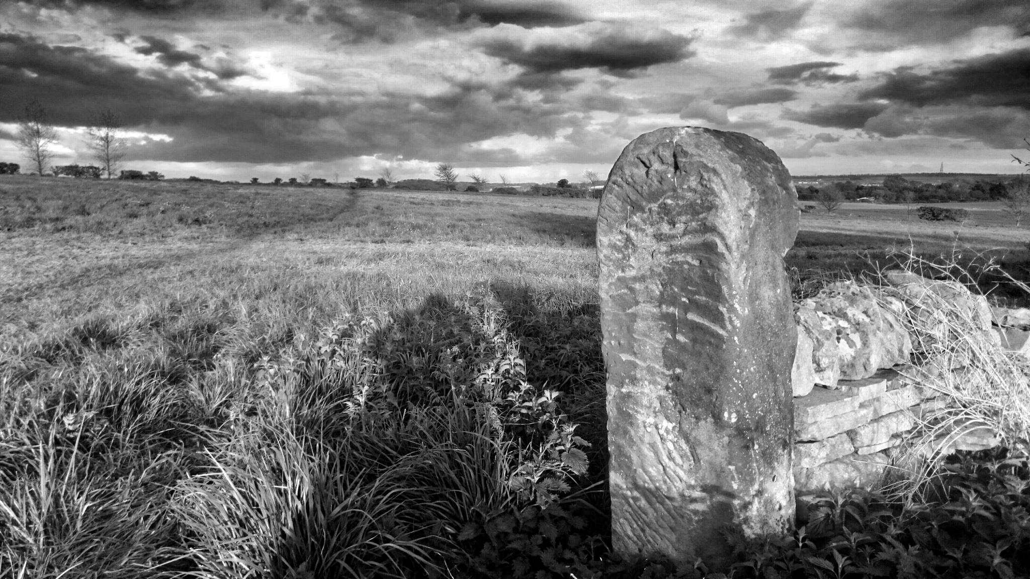 Photo in Random #black & white #rural